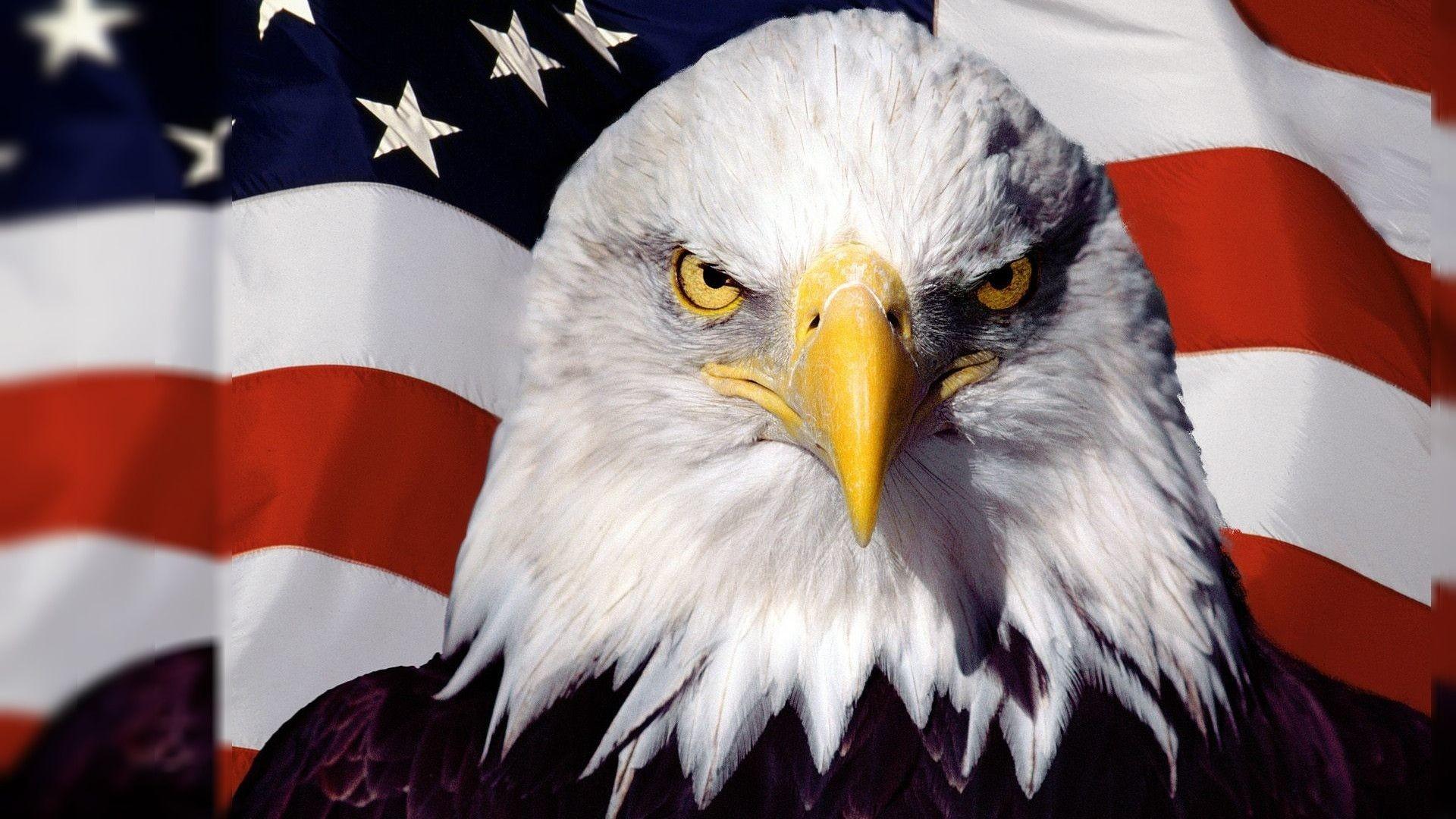 0 american flag wallpaper 17K wallpapertp american flag wallpaper HD
