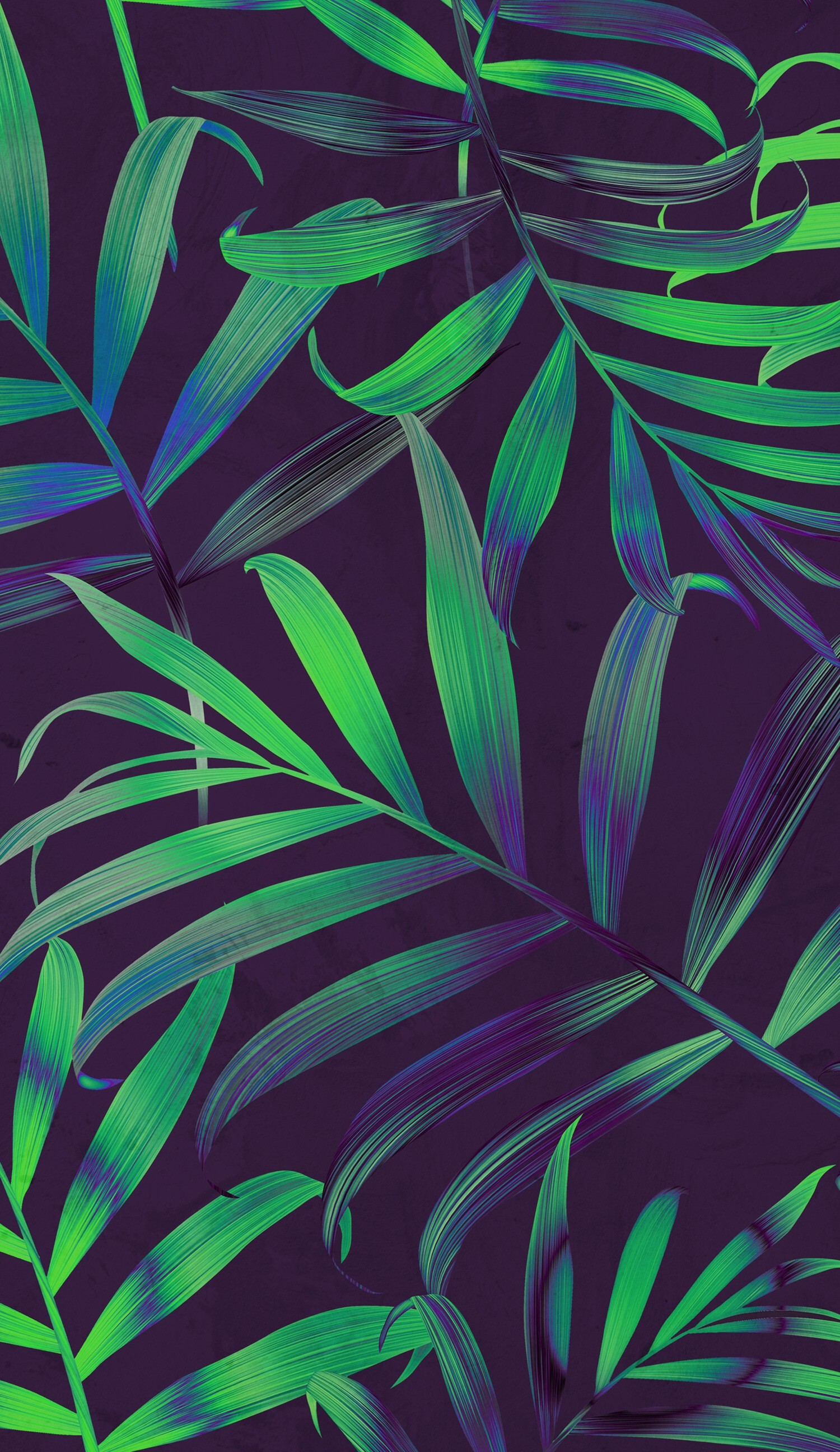 Ohh, this leaves reminds me summer 👌😱💙. Image result for iphone wallpaper  tumblr