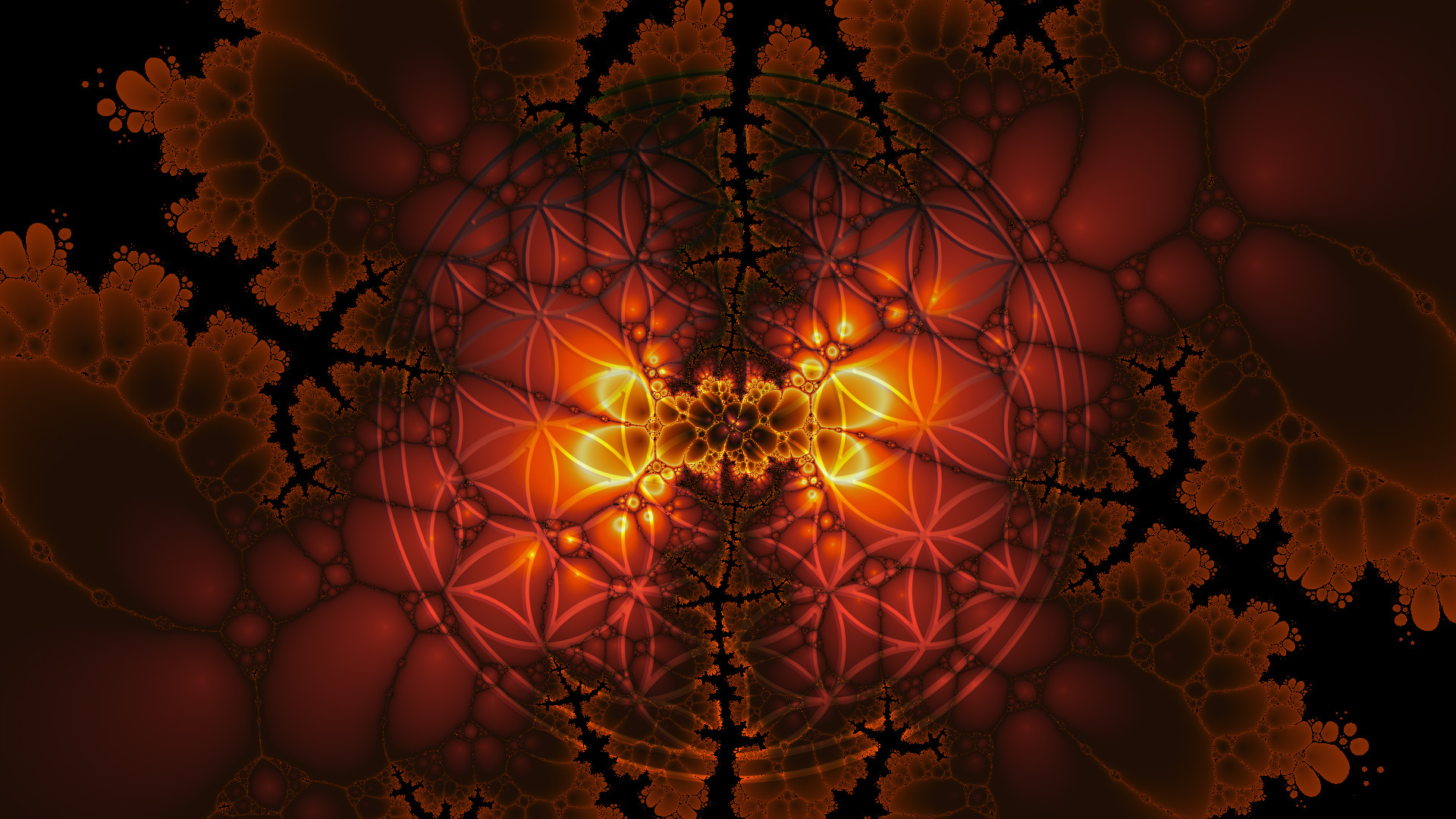 … flower of life screen saver hd 1080 x 1920 by zeneteru