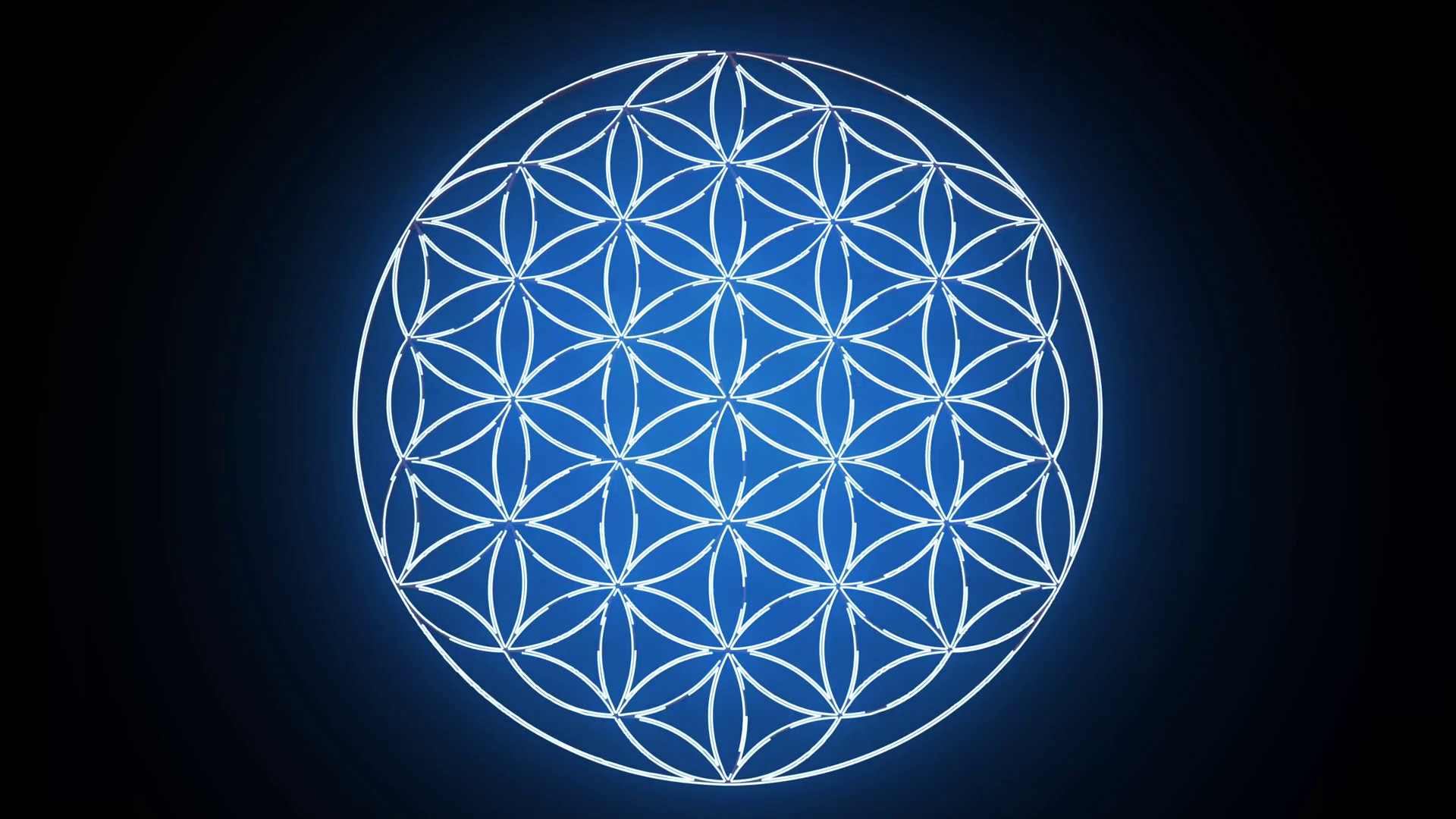 The Flower of Life Forming Sacred Geometry Symbol Motion Background –  VideoBlocks