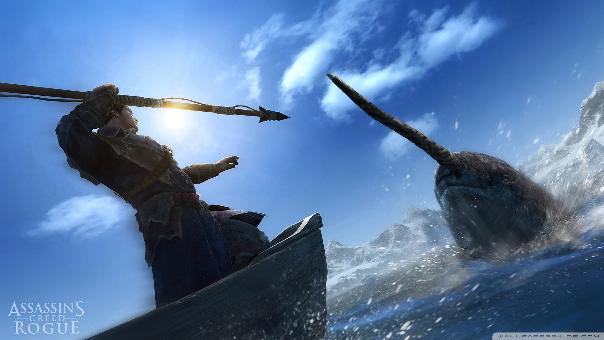 Assassins Creed Rogue Hunting Narwhal HD Wide Wallpaper for Widescreen