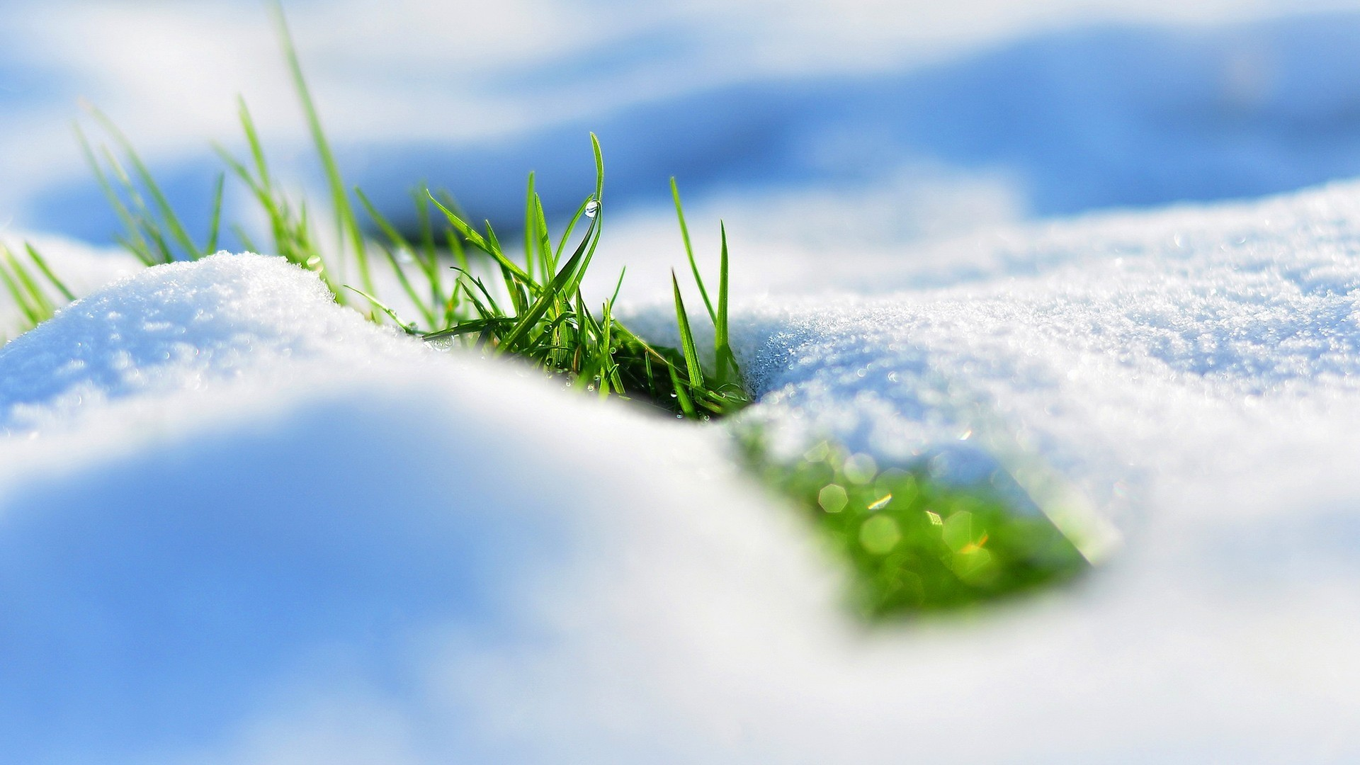 Preview wallpaper spring, snow, grass, reflections 1920×1080