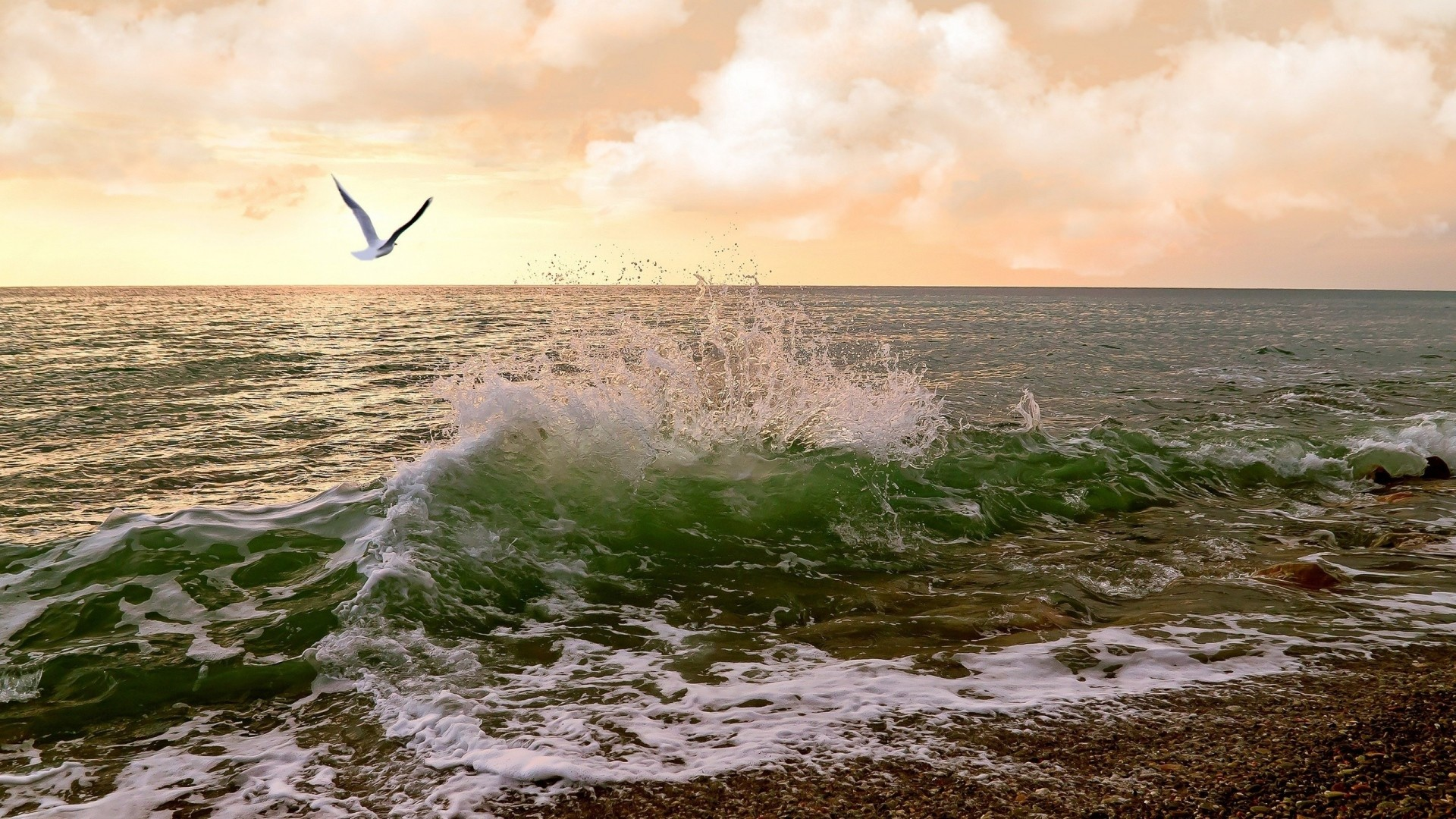 Preview wallpaper sea, waves, surf, seagulls, sky 1920×1080