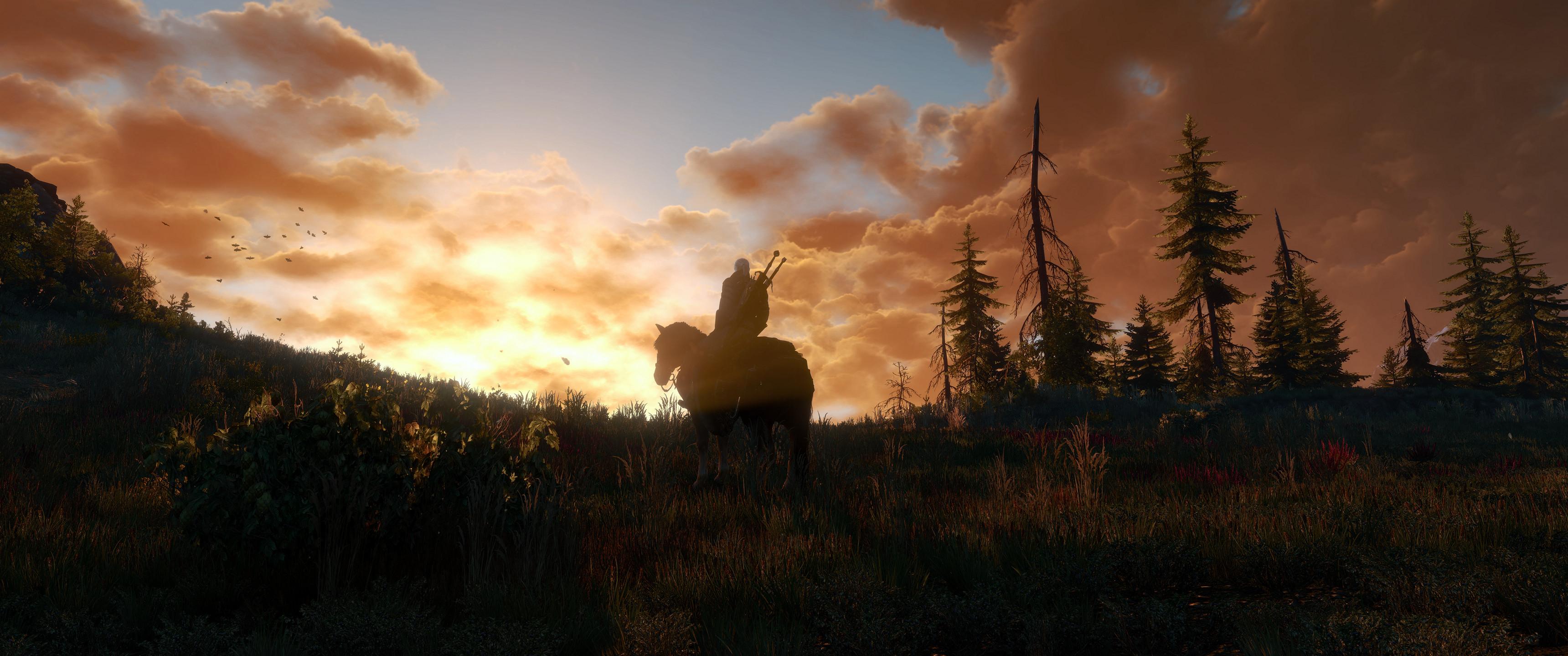 An album of my ultra wide (3440×1440) Witcher 3 screenshots :  ultrawidemasterrace