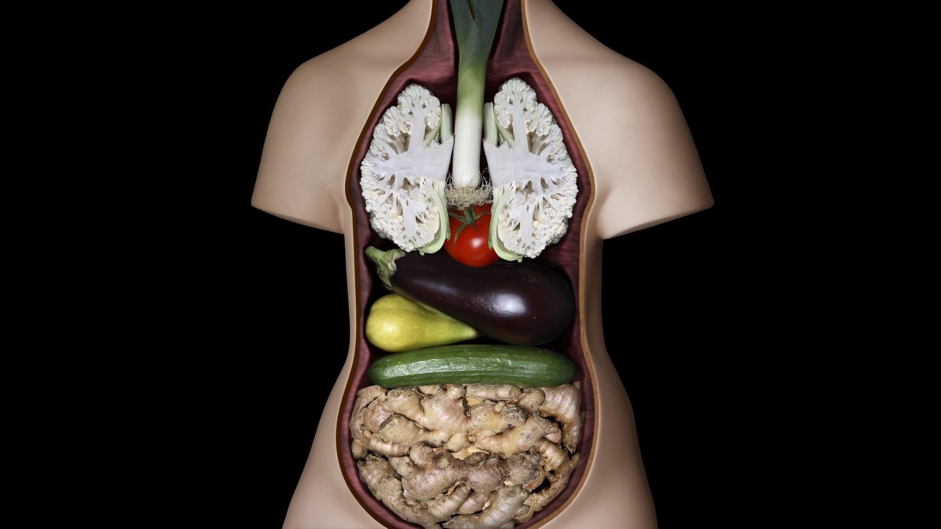 figurines, Vegetables, Guts, Humor, Anatomy Wallpapers HD / Desktop and  Mobile Backgrounds