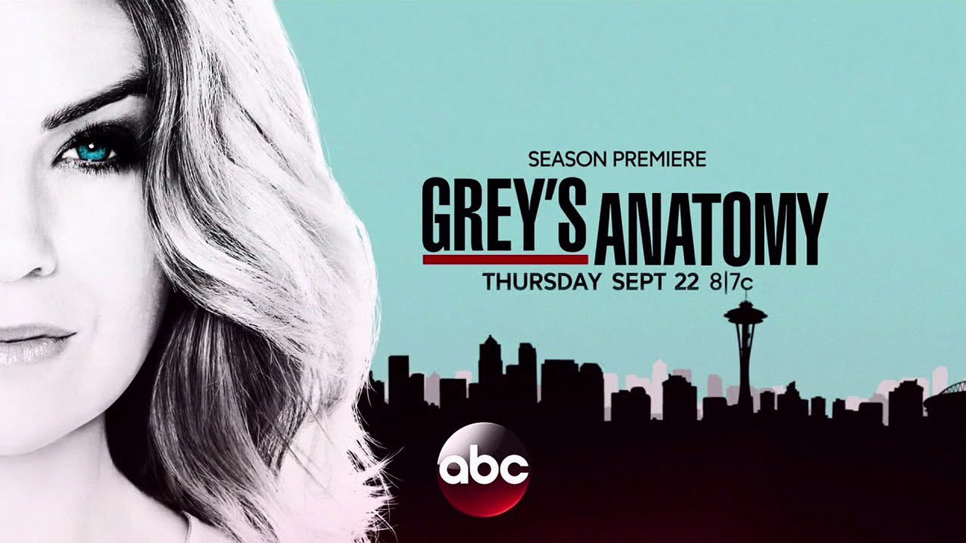 Grey's Anatomy Season 13 Poster wallpaper