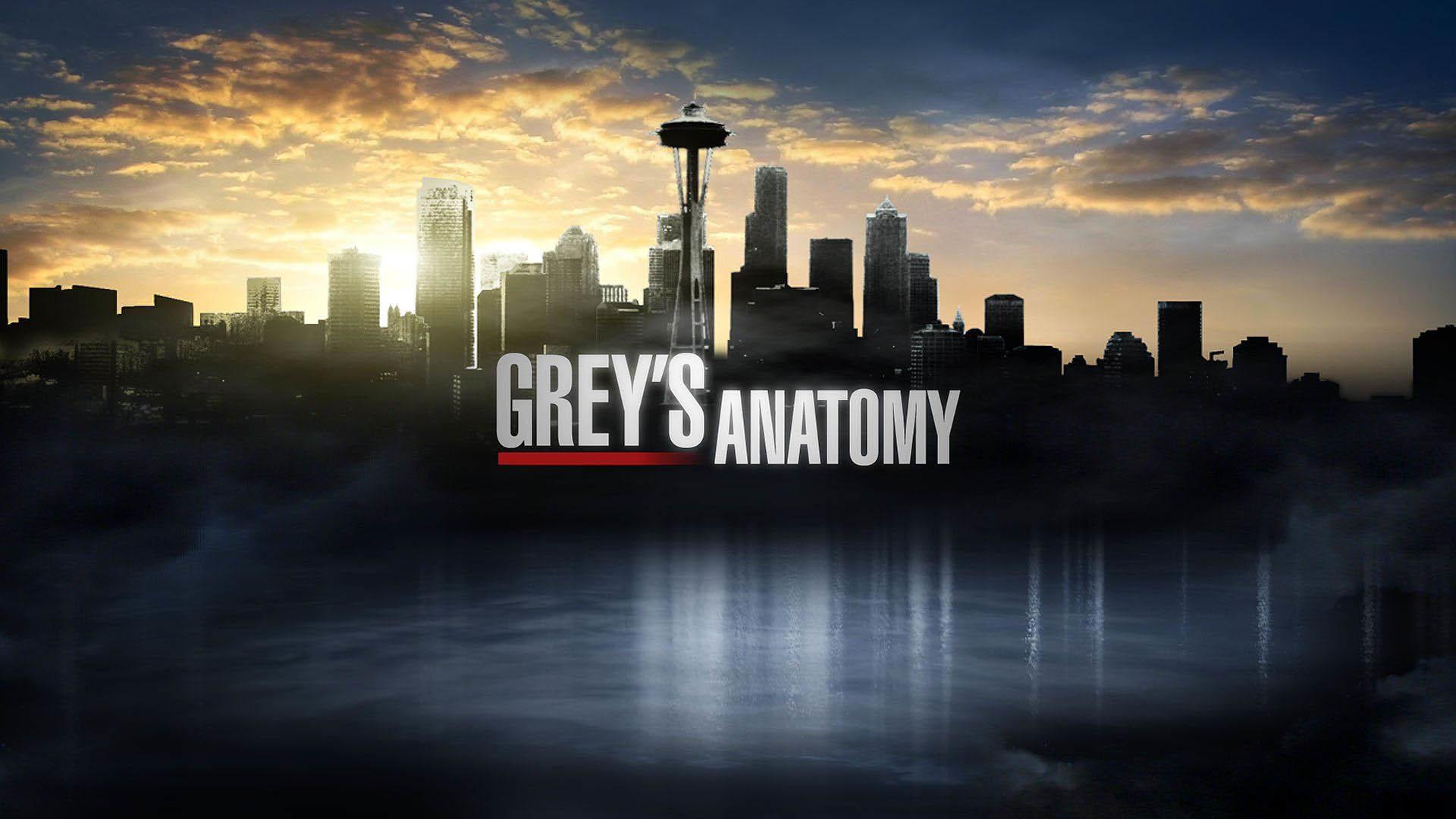Grey's Anatomy Logo wallpaper