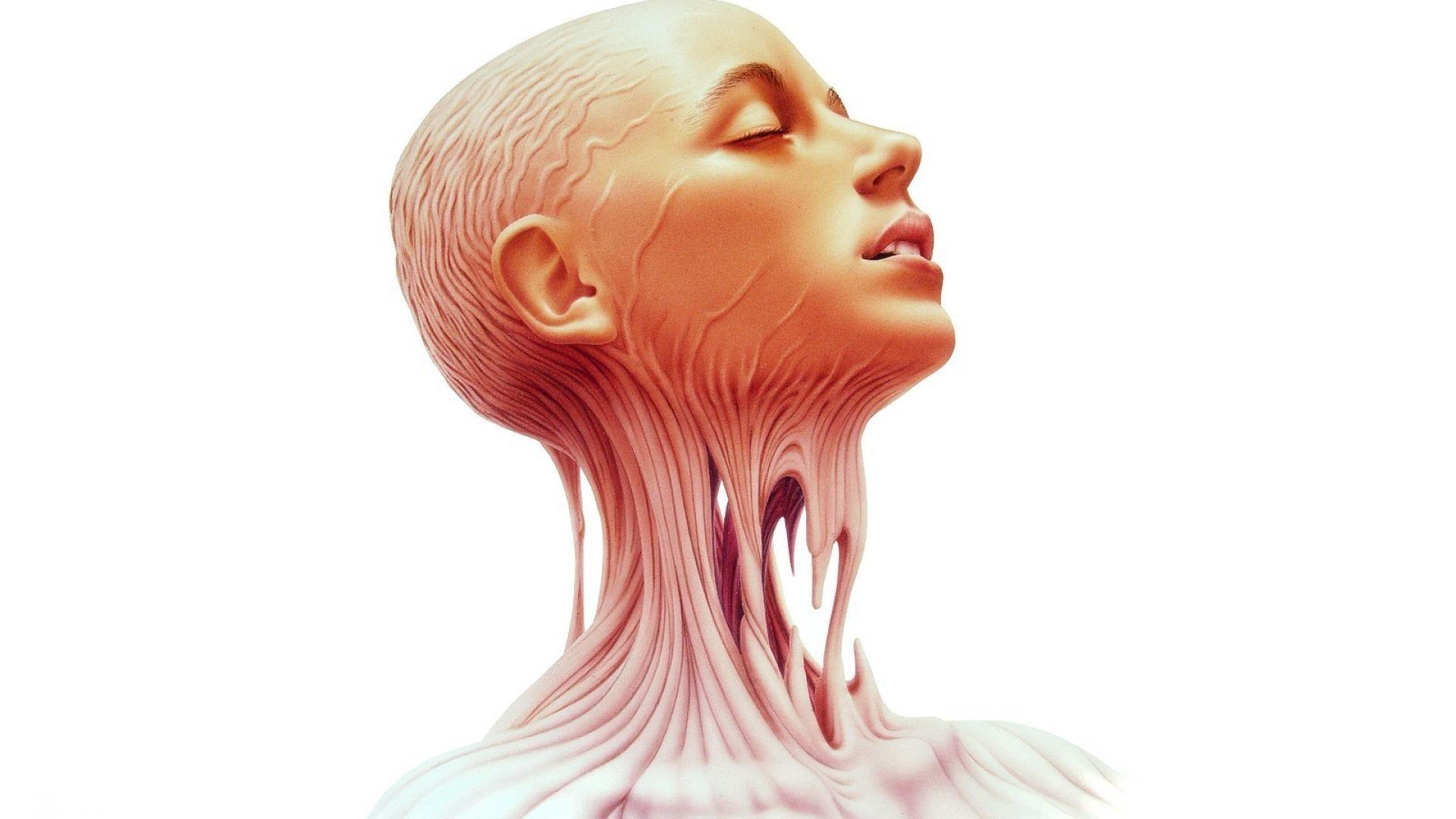 human anatomy desktop backgrounds wallpaper, 118 kB – Braylen Blare