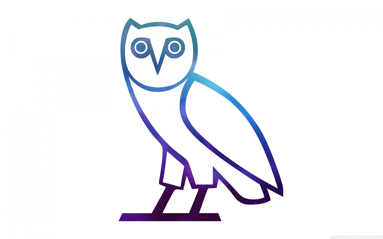 Filename: ovo_owl-wallpaper-2880×1800.jpg