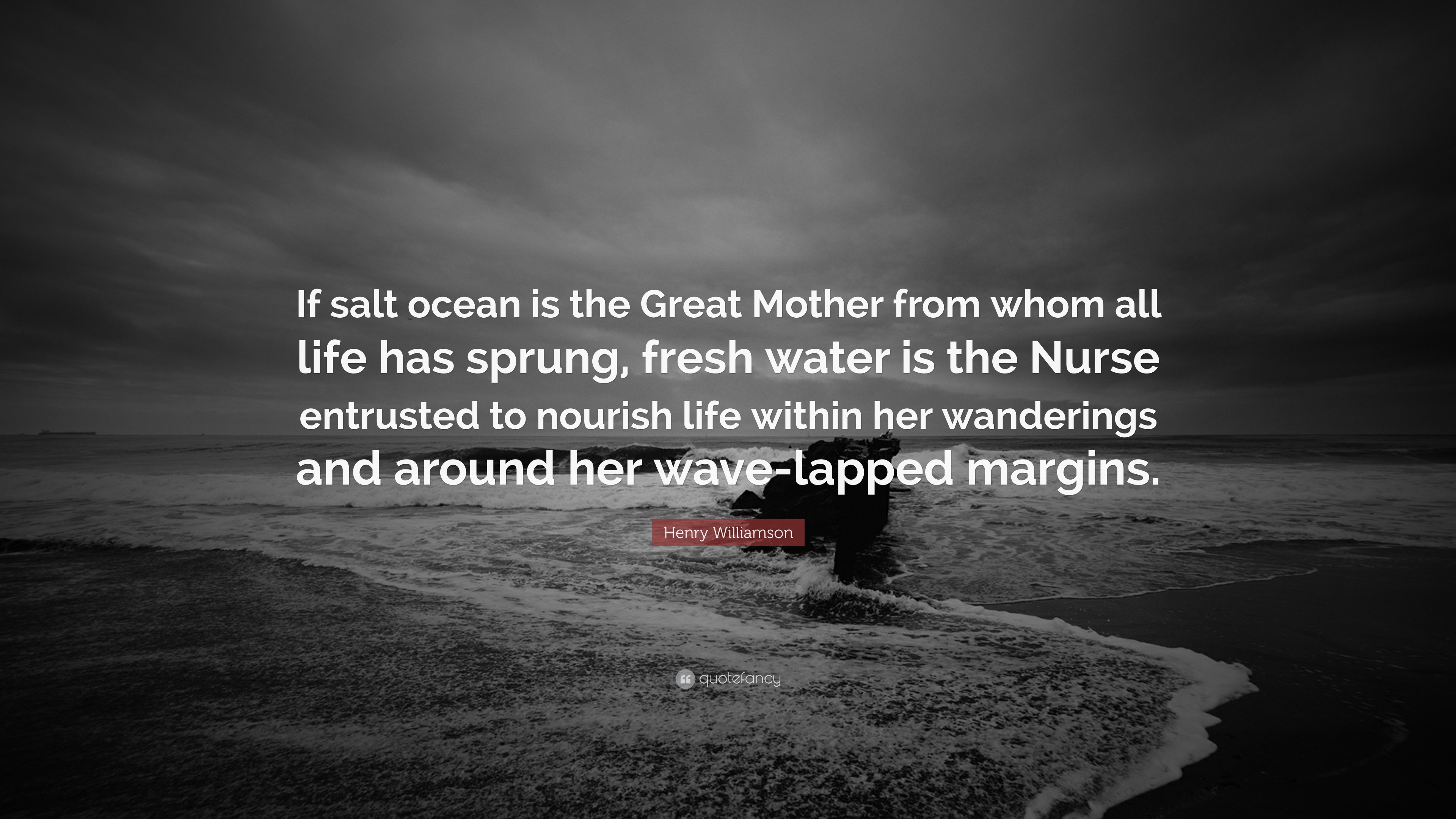 """Henry Williamson Quote: """"If salt ocean is the Great Mother from whom all  life"""