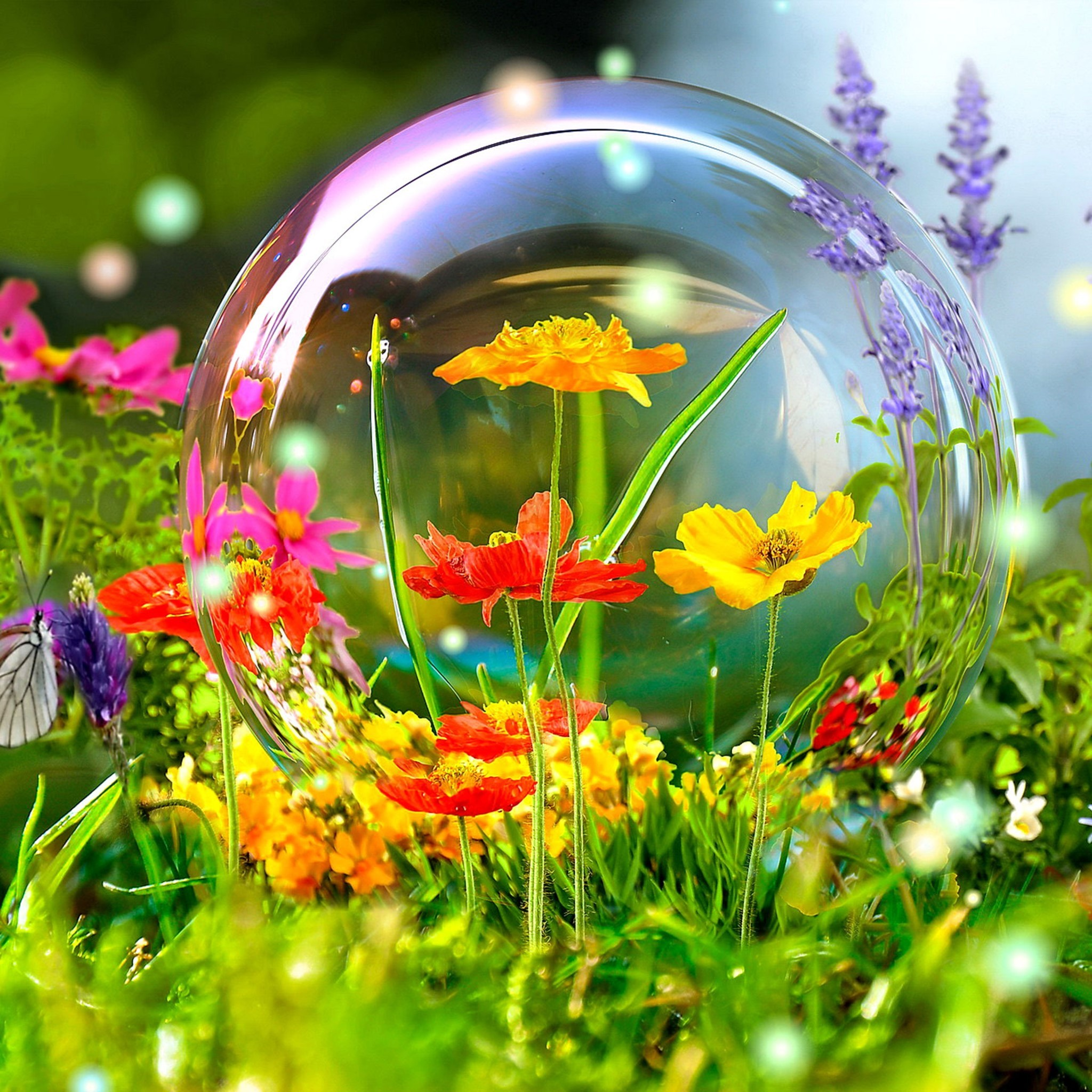 Nature Live Wallpapers For PC – Wallpaper Zone More