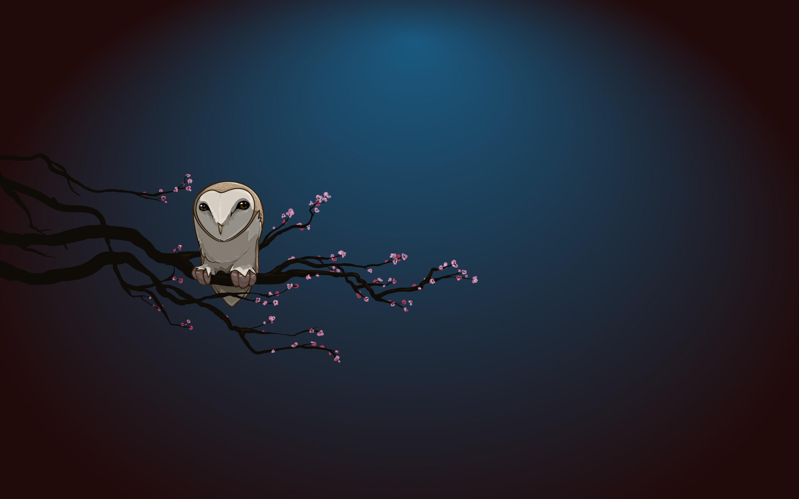 ovo owl iphone wallpaper – photo #9