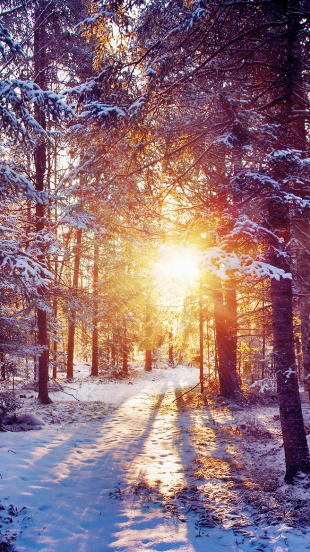 Cute Winter Backgrounds 1080×1920