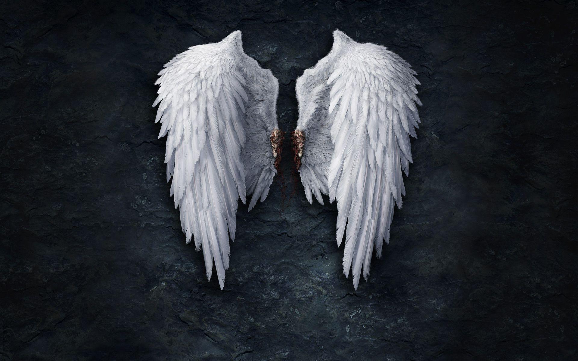 Broken angel wings Wallpaper #
