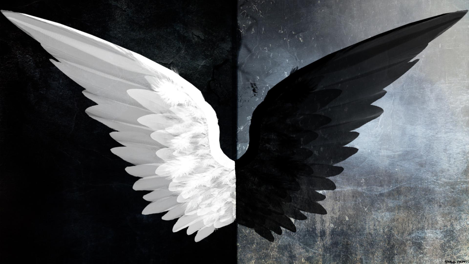 Fantasy – Angel Dark Black & White Wings Light Evil Wallpaper