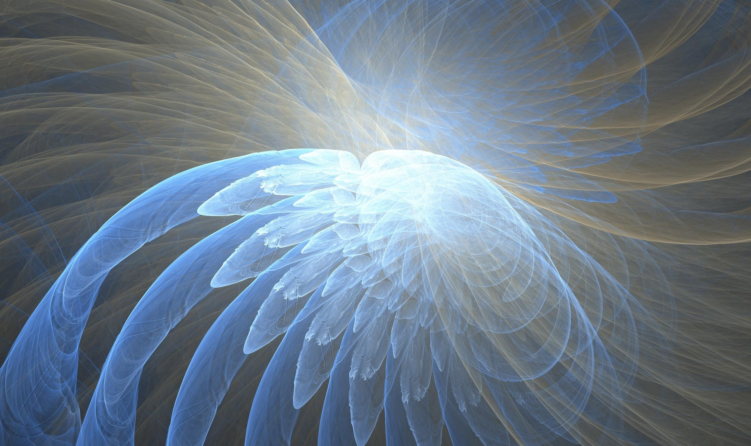 Ultra HD Wallpaper Background – Blue Angel Wing Fractal DOWNLOAD This UHD  4K Wallpaper for FREE