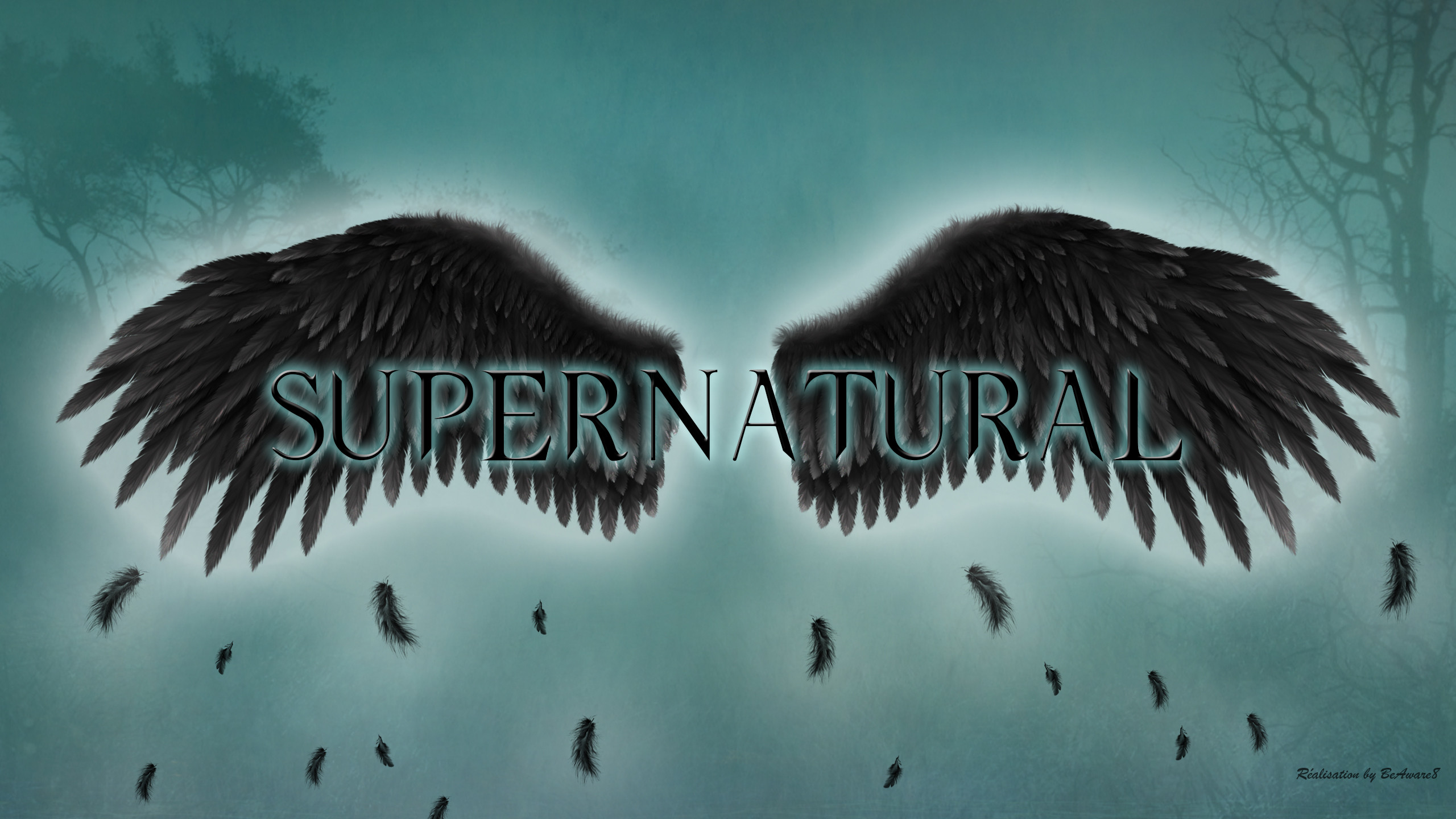 … Supernatural – the fallen angel wings by BeAware8