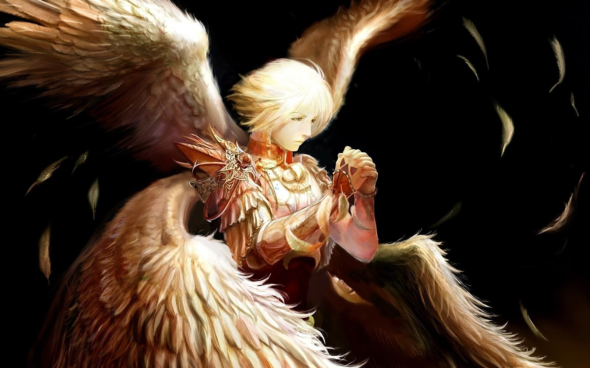 Angel wings feathers warrior male wallpaper | | 521187 |  WallpaperUP
