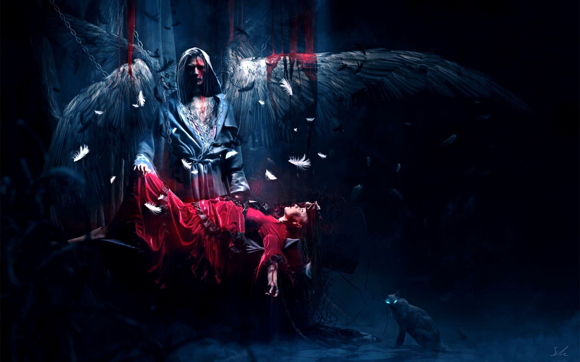 Wallpaper Angel, Victim, Wings, Night, Cat, Eyes, Feathers HD, Picture,  Image