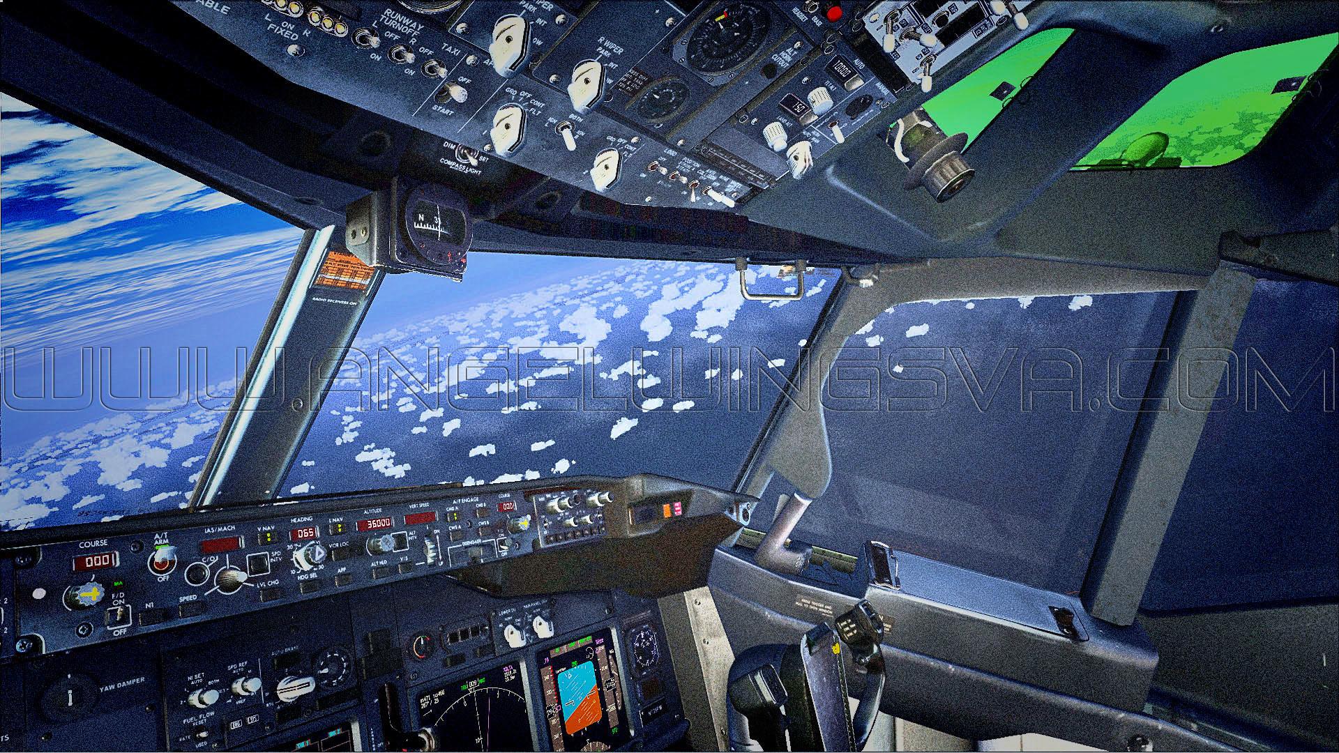 Cockpit Angel Wings B737/800
