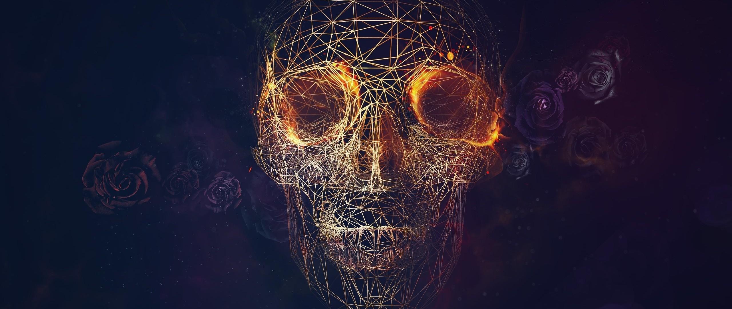 Preview wallpaper skull, lines, roses, geometry 2560×1080