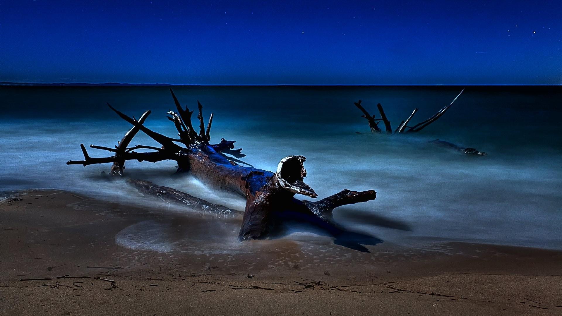 Starry Night 937416