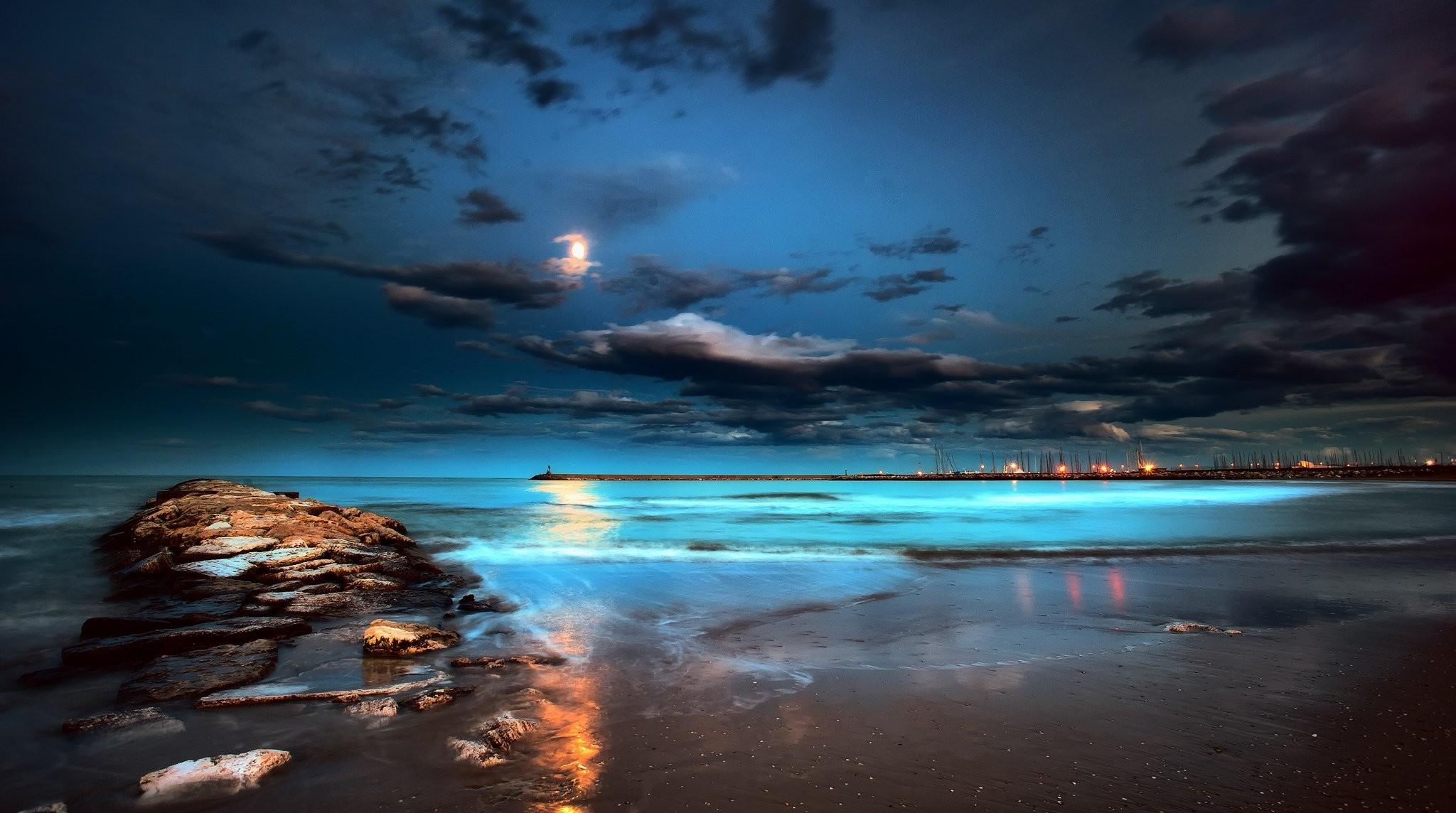 nature night beach moon beach sand HD wallpaper
