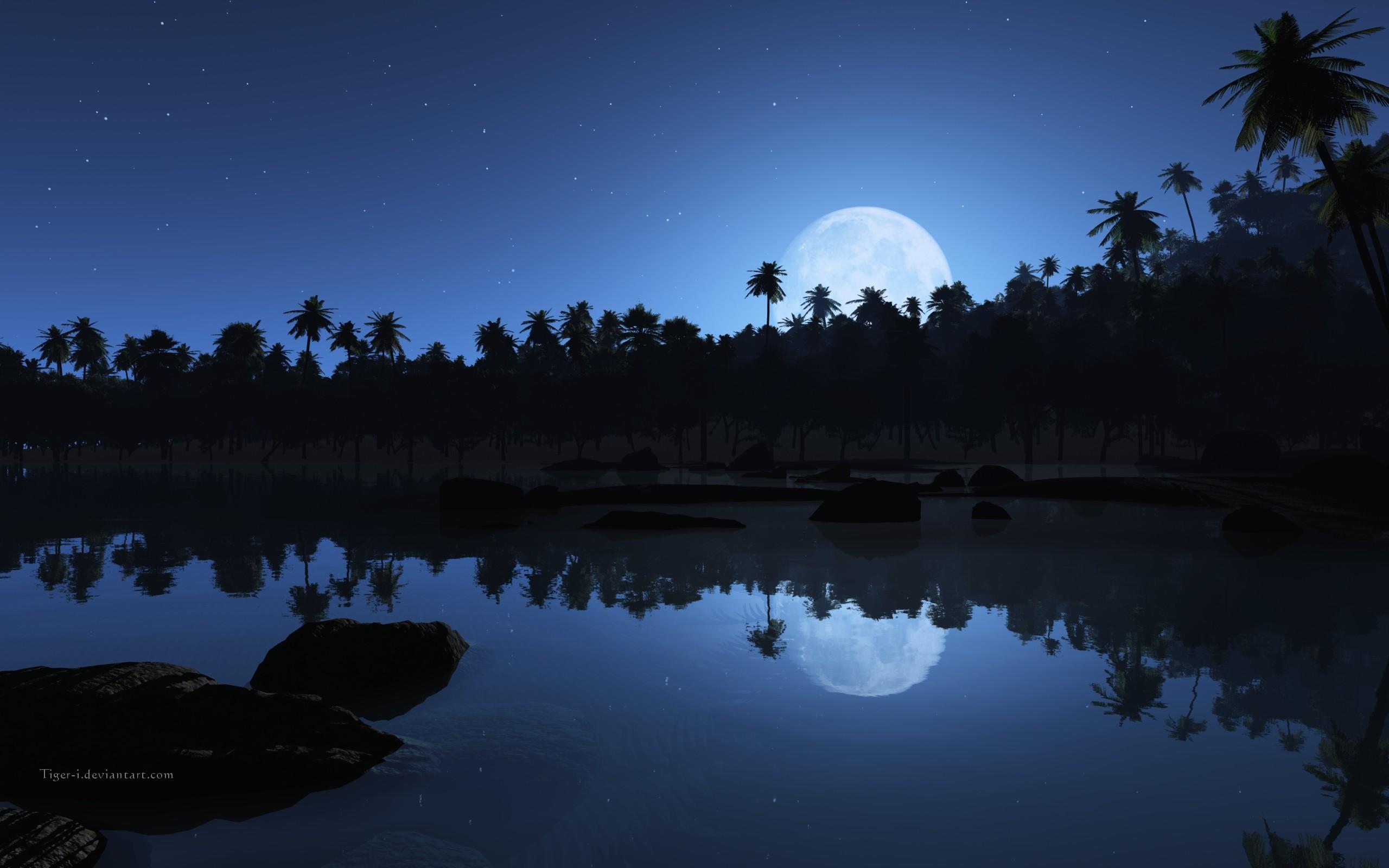 Earth – Beach Palm Tree Tropical Shore Night Blue Wallpaper
