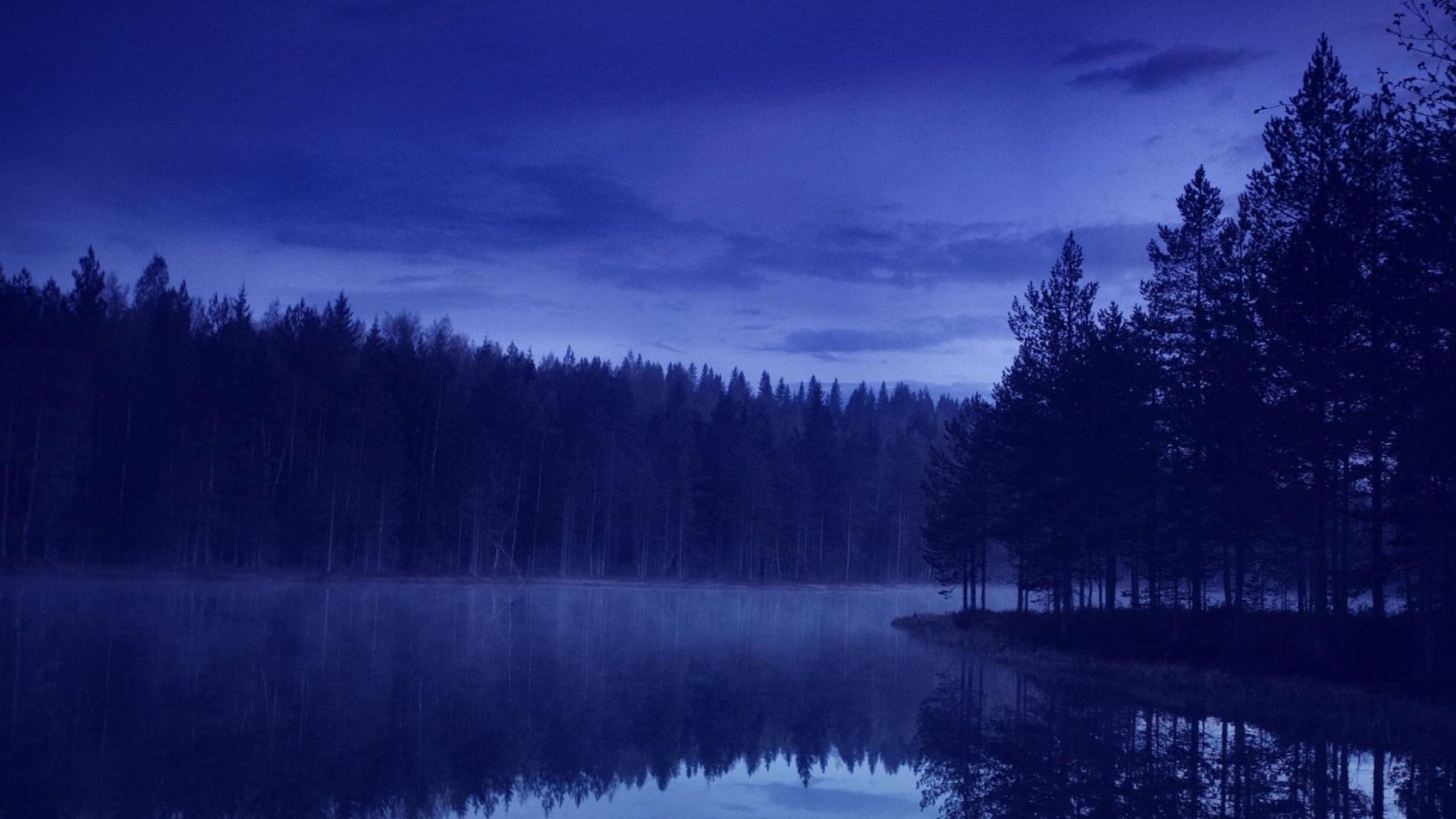 Wallpaper water, forest, beach, night, reflection