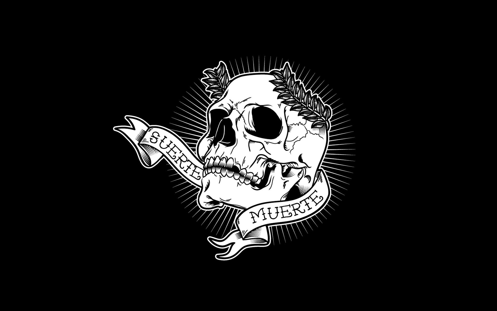 Black Skull HD desktop wallpaper : High Definition : Fullscreen 1920×1200