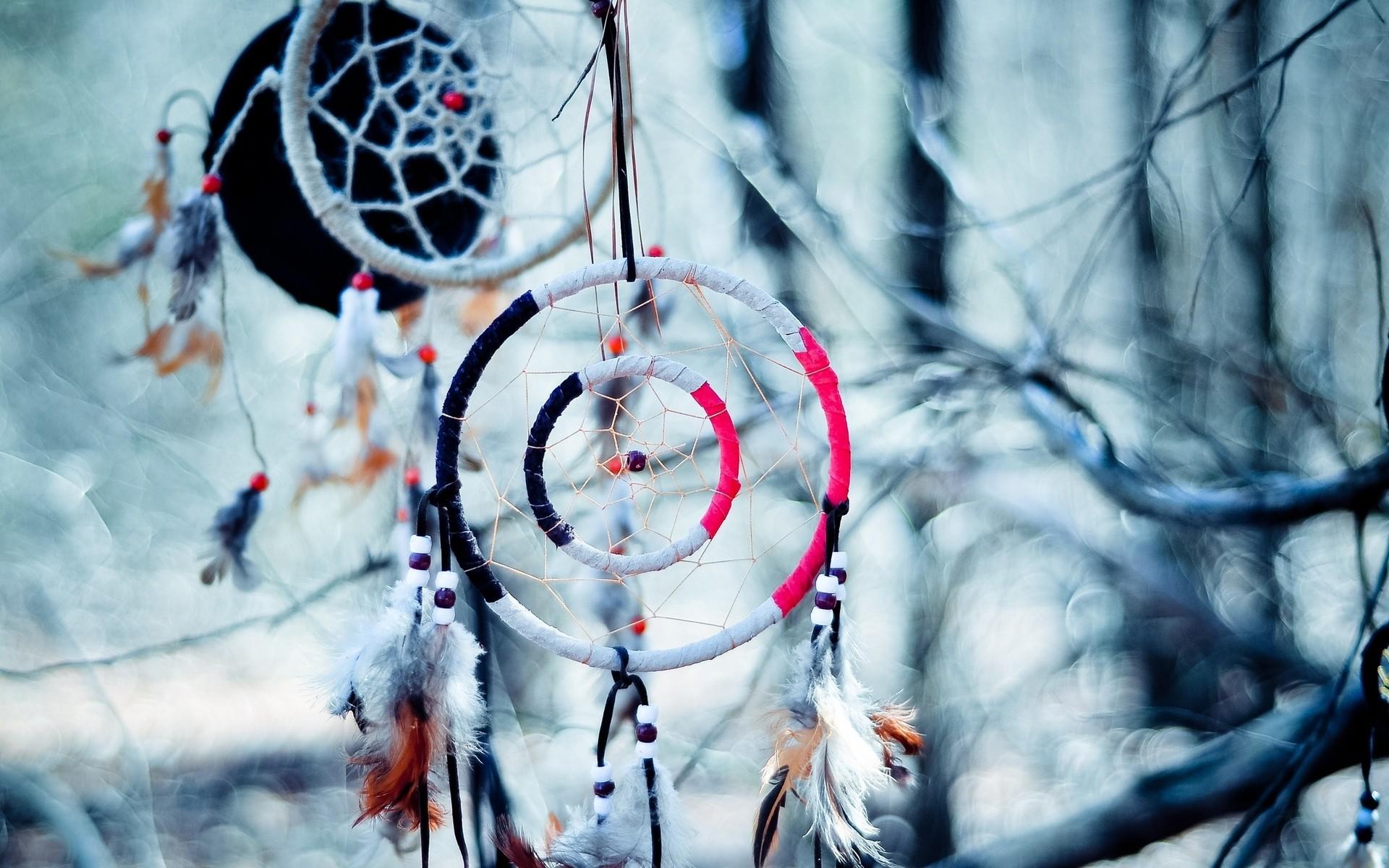 Dream Catcher native american artistic indian trees branch limb .