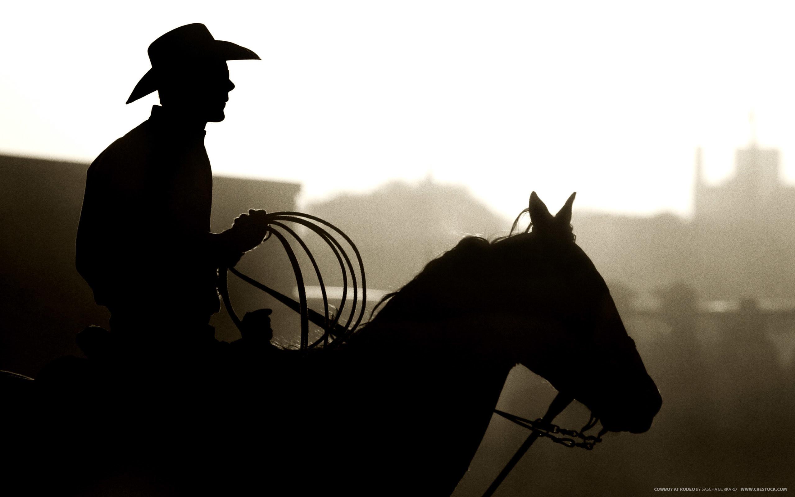 Cowboy at Rodeo   2560 x 1600   Download   Close