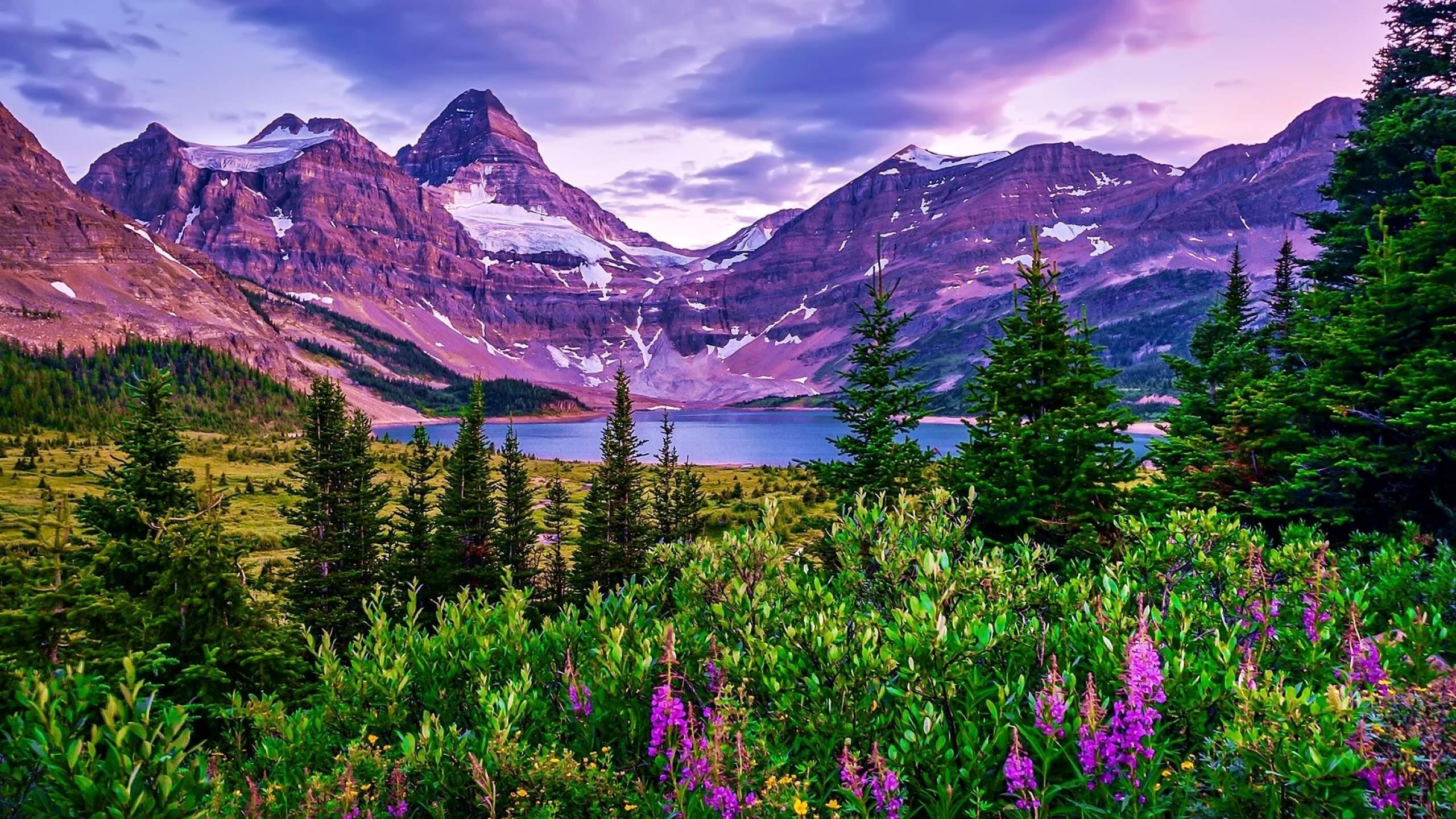 Mountain and Lake 4K Wallpaper HD