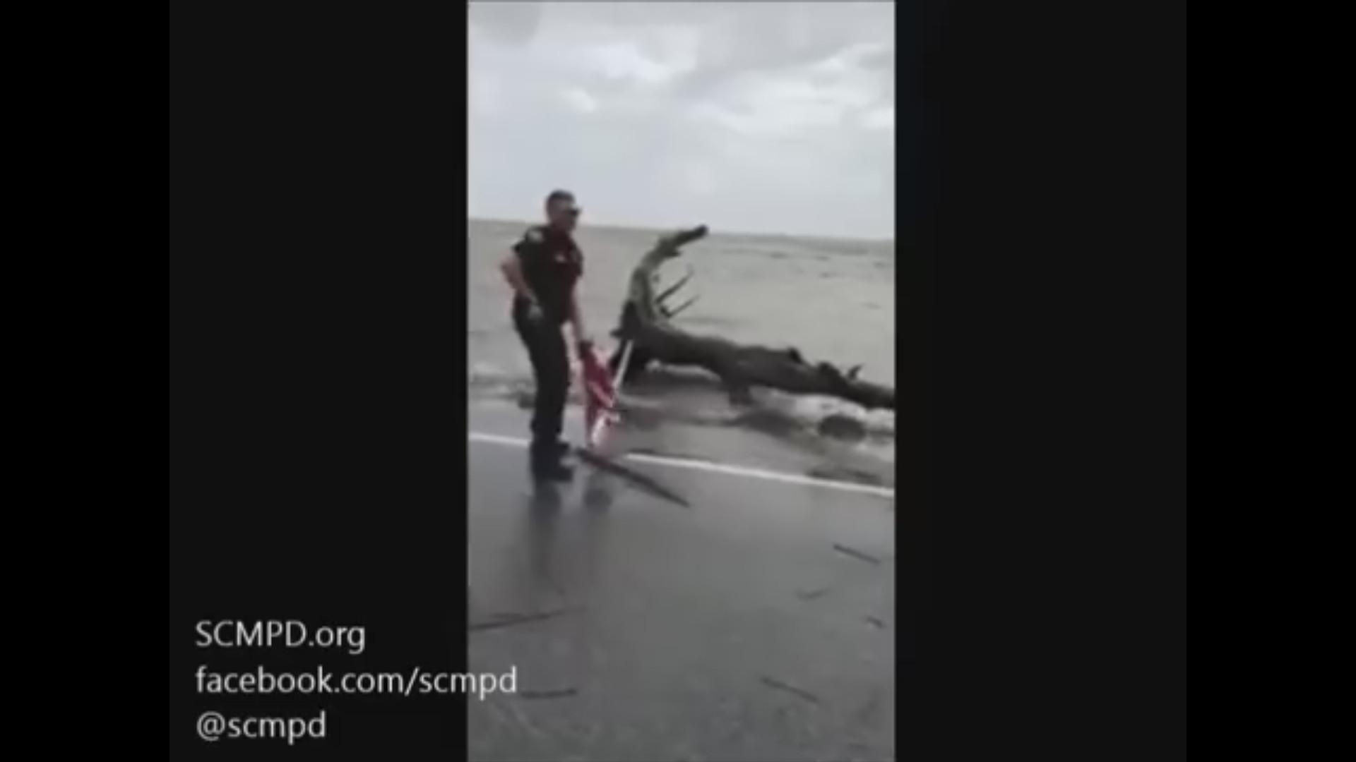 #TodaysViralVideo: Savannah-Chatham Metropolitan Police Officer Saves An  American Flag During Irma