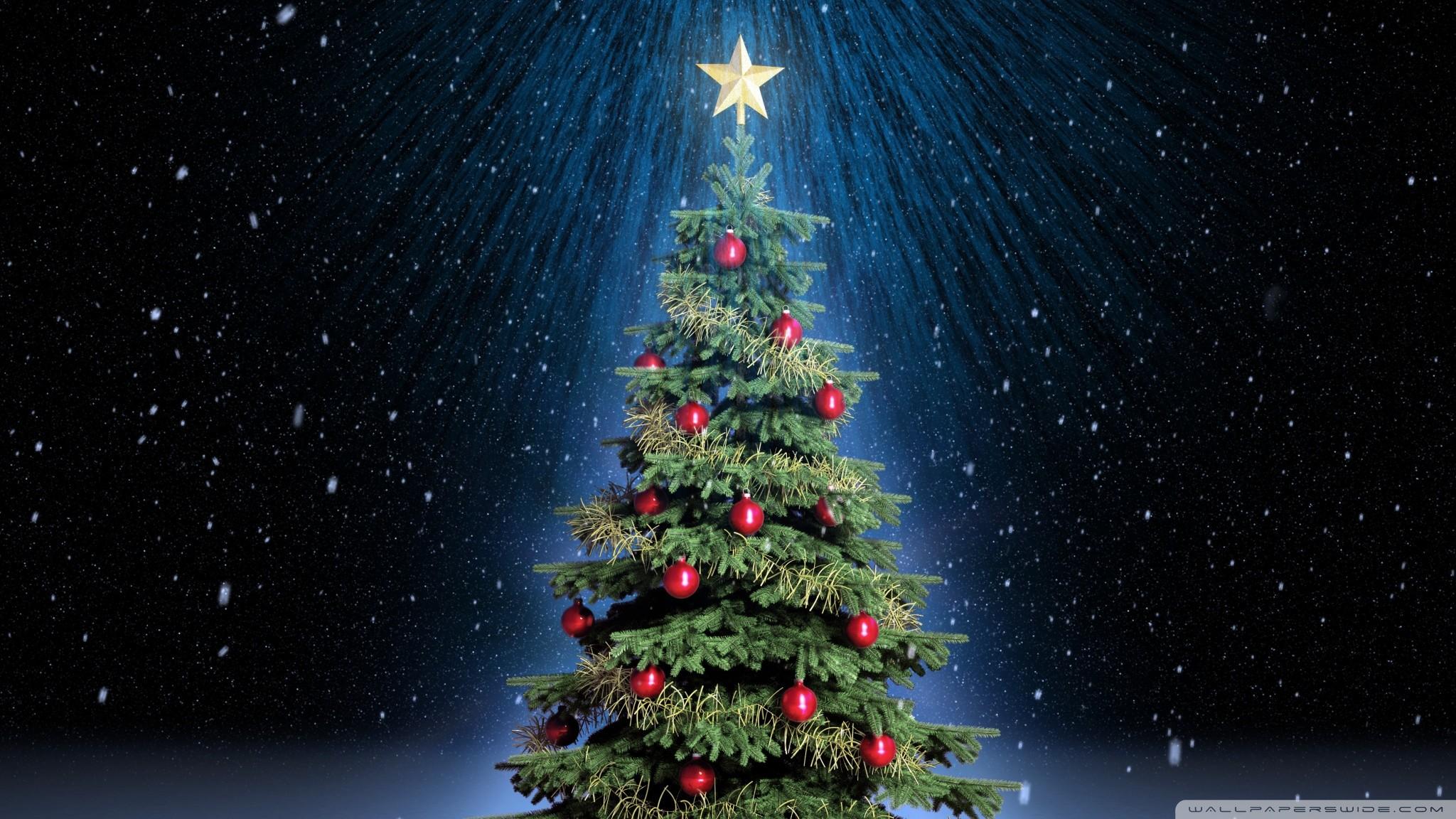 … holidays wallpapers; clic christmas tree hd desktop wallpaper  widescreen high …