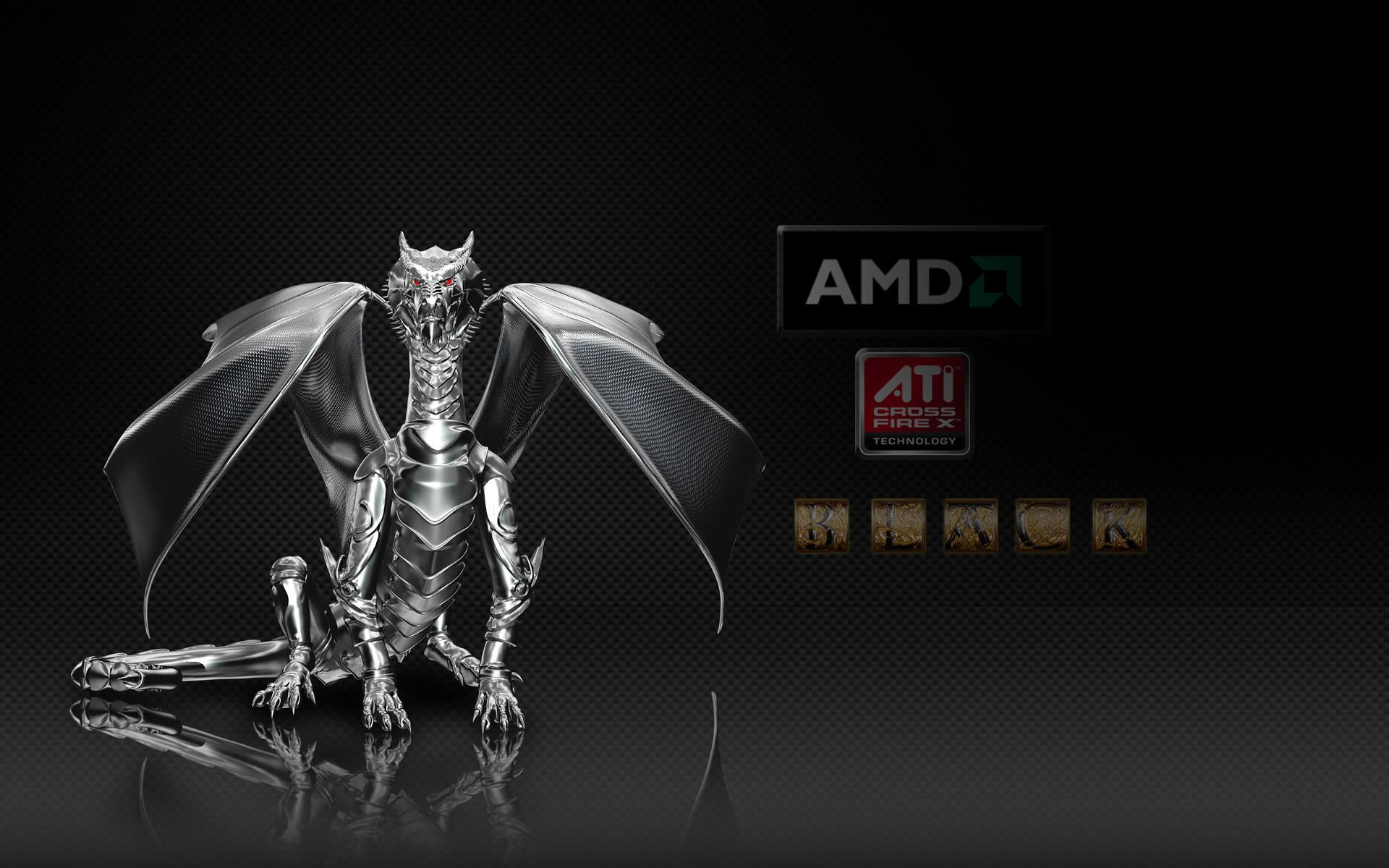 Dragon AMD Computer HD desktop wallpaper, AMD wallpaper – Computers no.