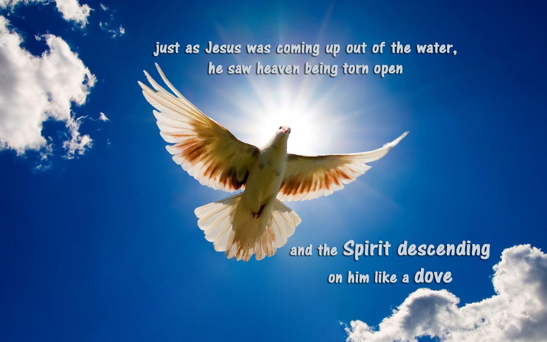 God-The creator images <b>Jesus</b> in <b