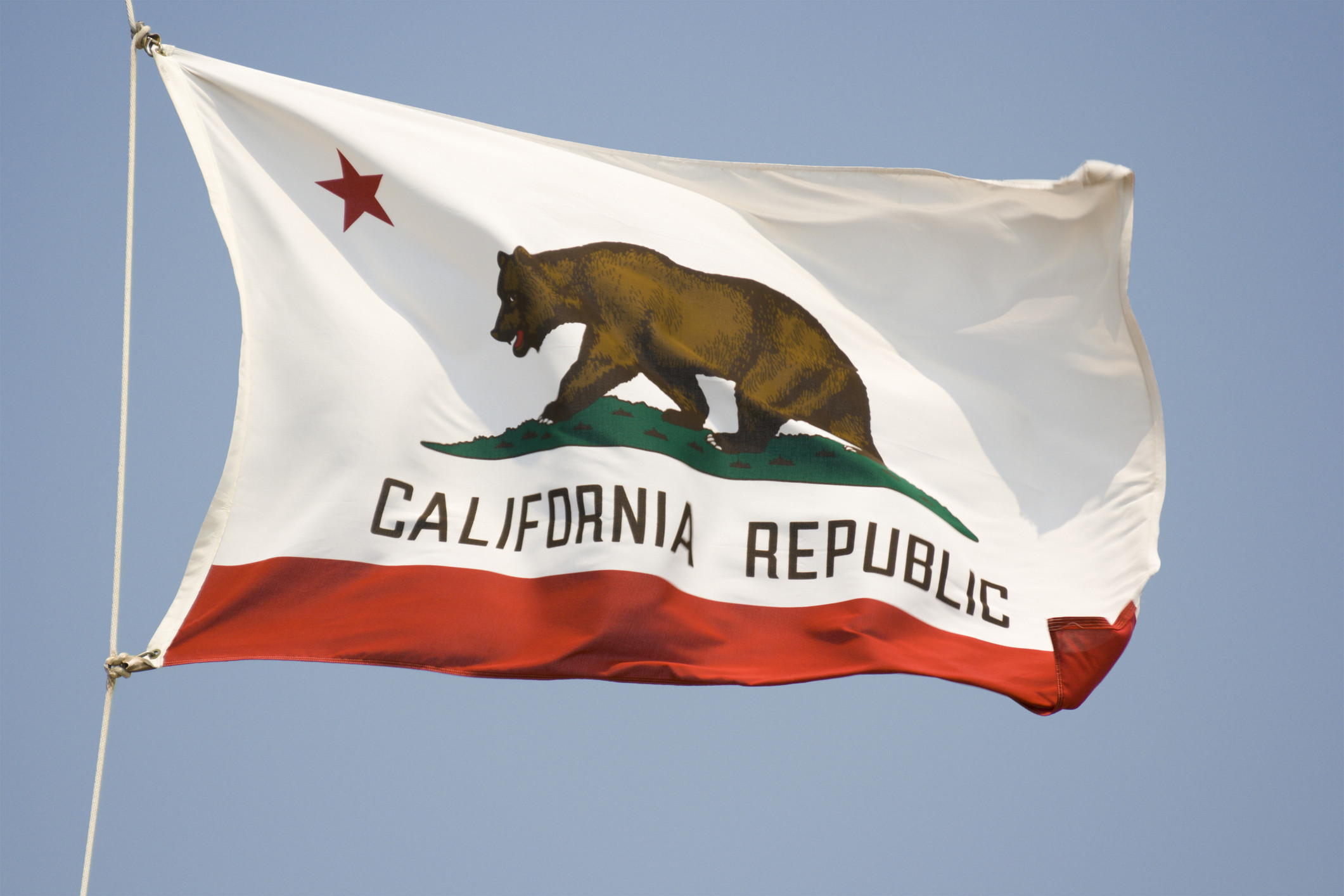 California State Flag, Waving State Banner with Bear and Star. (Credit:  YangYin