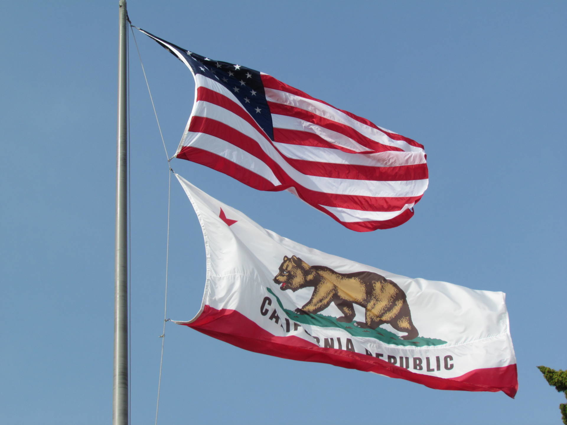 From His Home in Russia, #Calexit Leader Plots California Secession    Election 2016   The California Report   KQED News