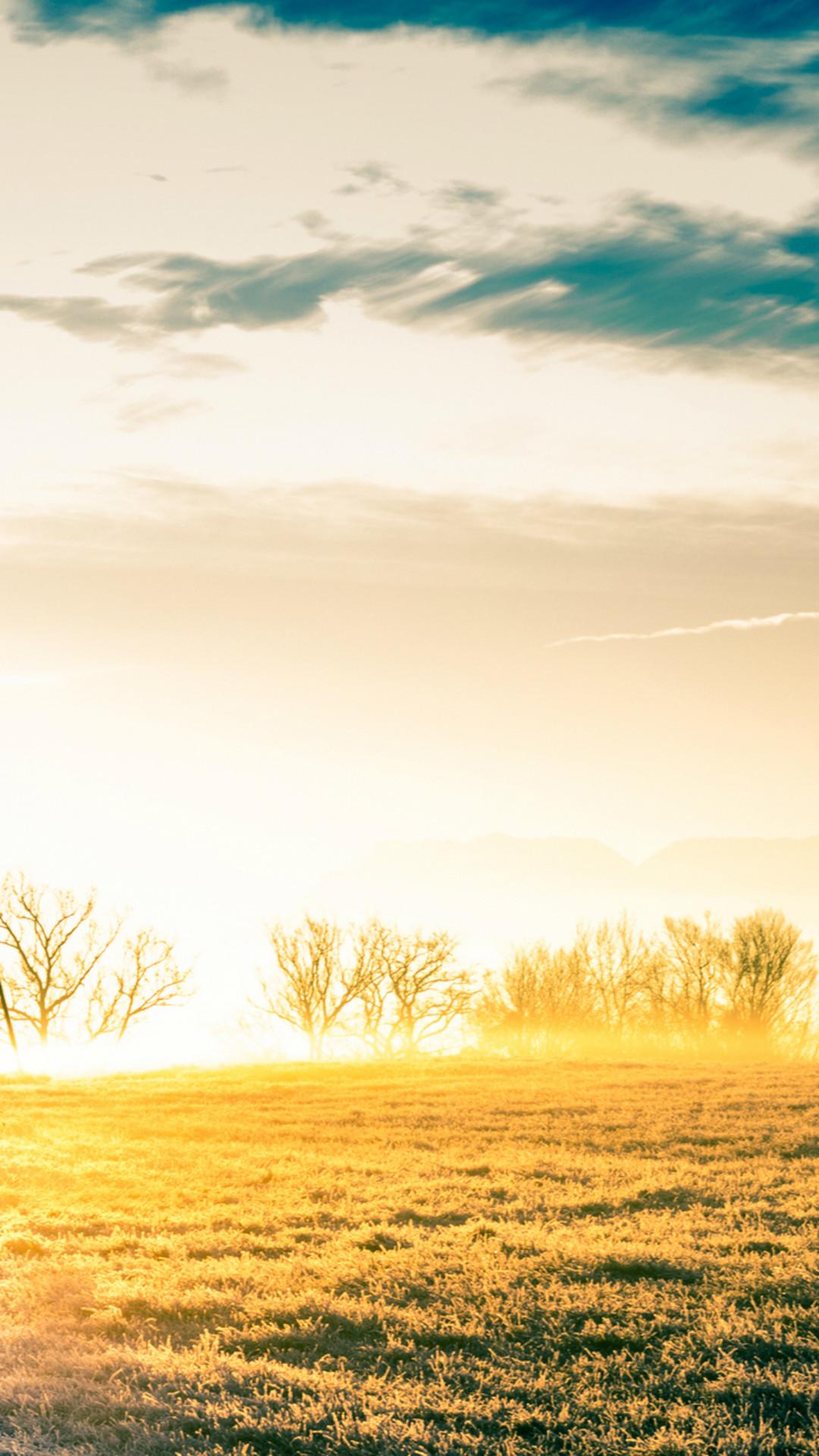 Vast Bright Golden Wither Grass Field iPhone 7 wallpaper