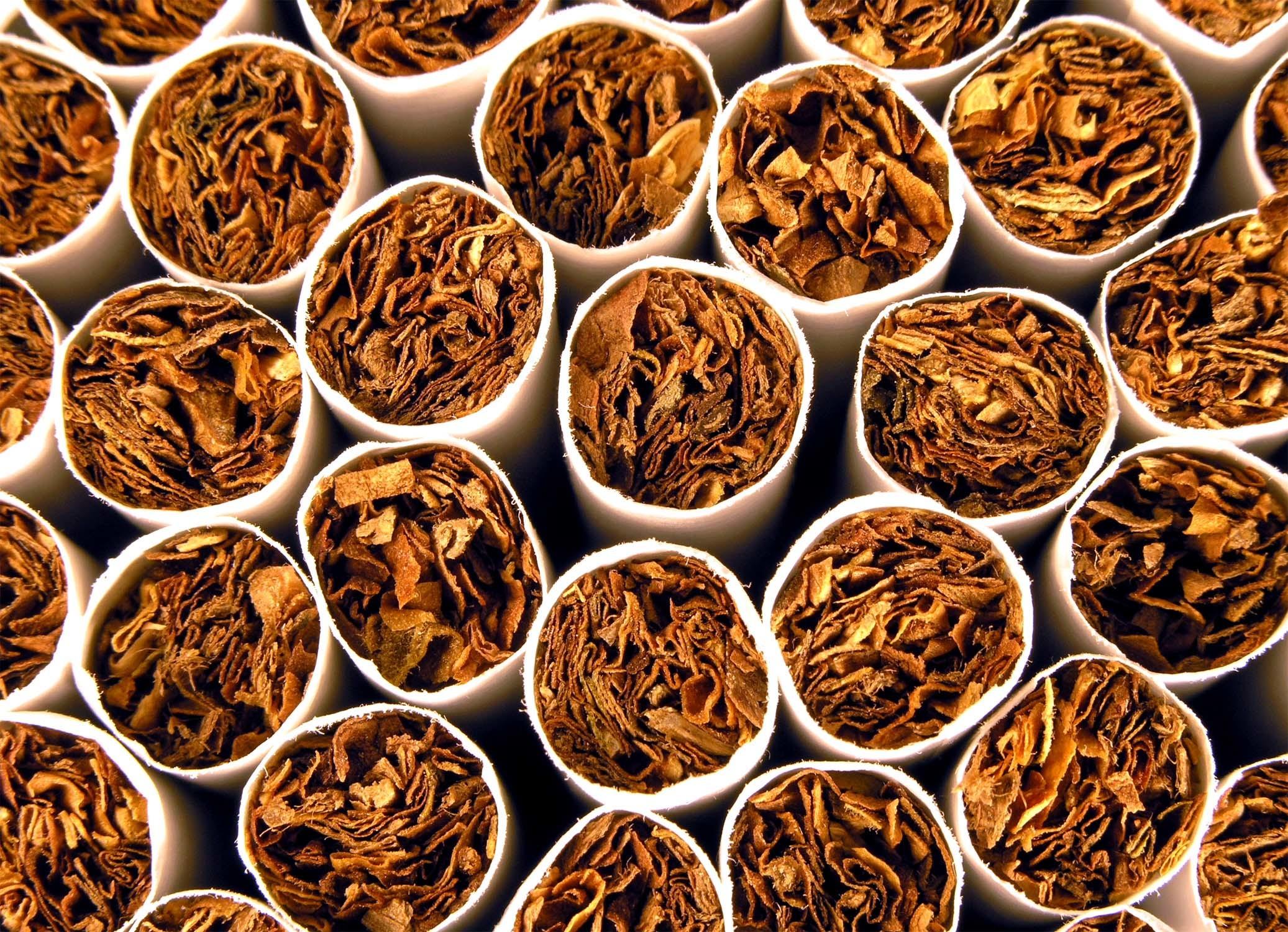 Tobacco-background