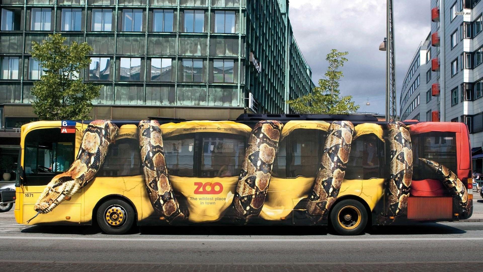 … wallpapers 23877; copenhagen zoo advert snake bus walldevil …