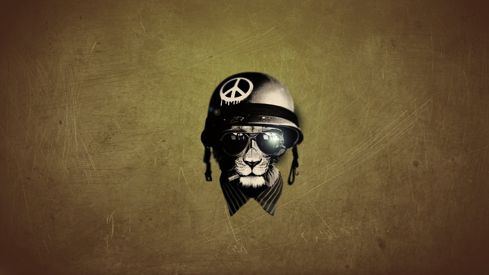… hidden moves lion helmet leo hd wallpaper …