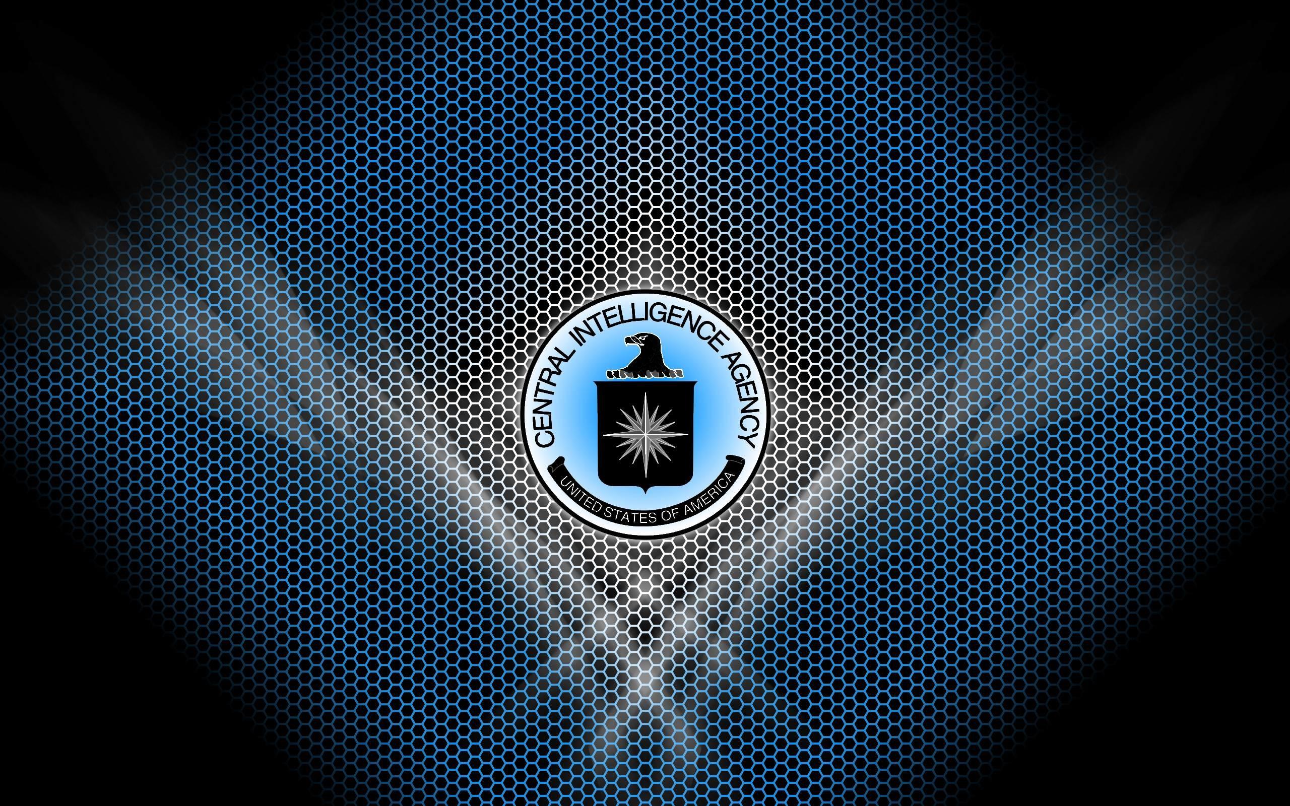 DeviantArt: More Like C.I.A. Terminal Logon 3-Pack by freddiemac