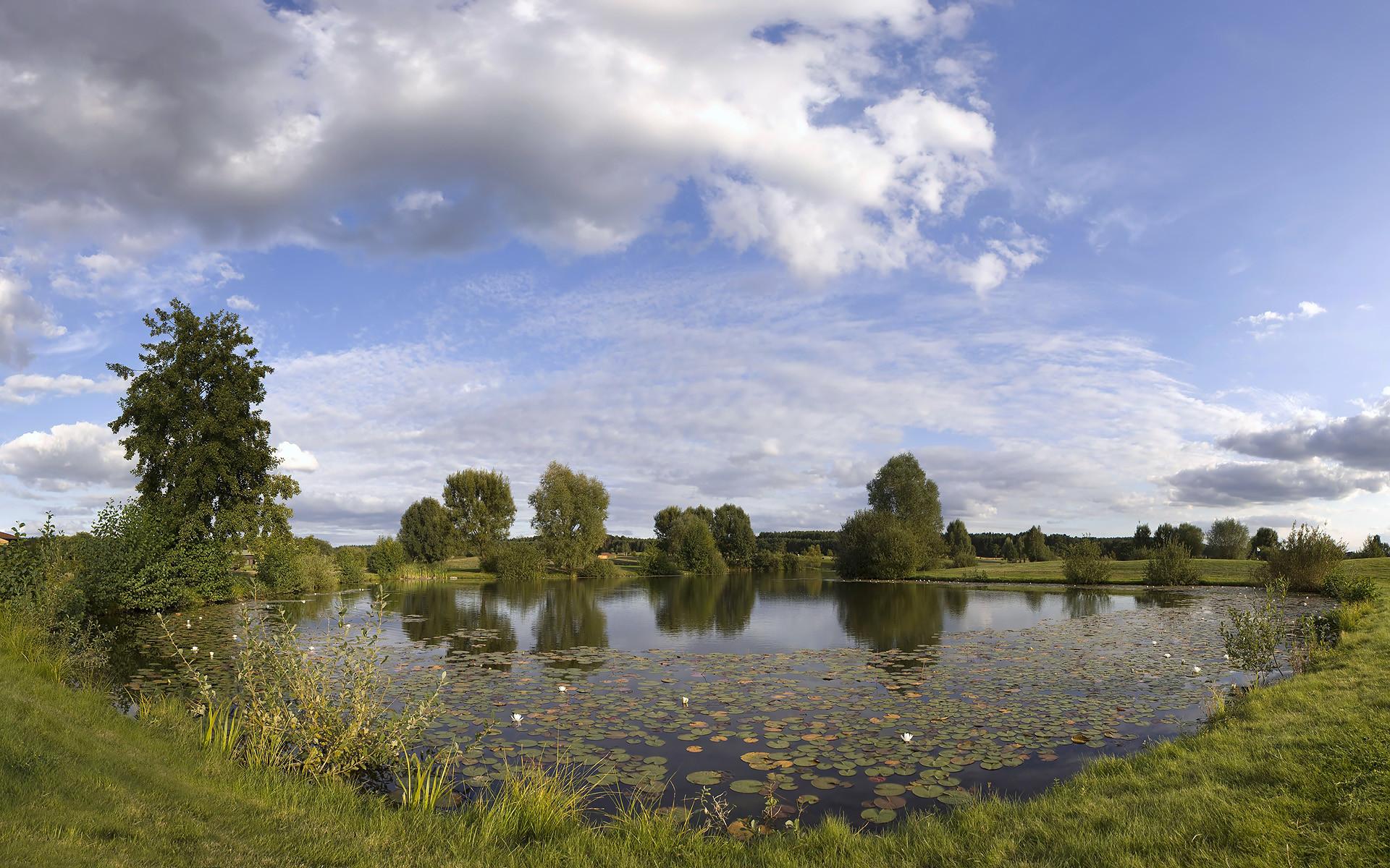 Teich-Landschaft