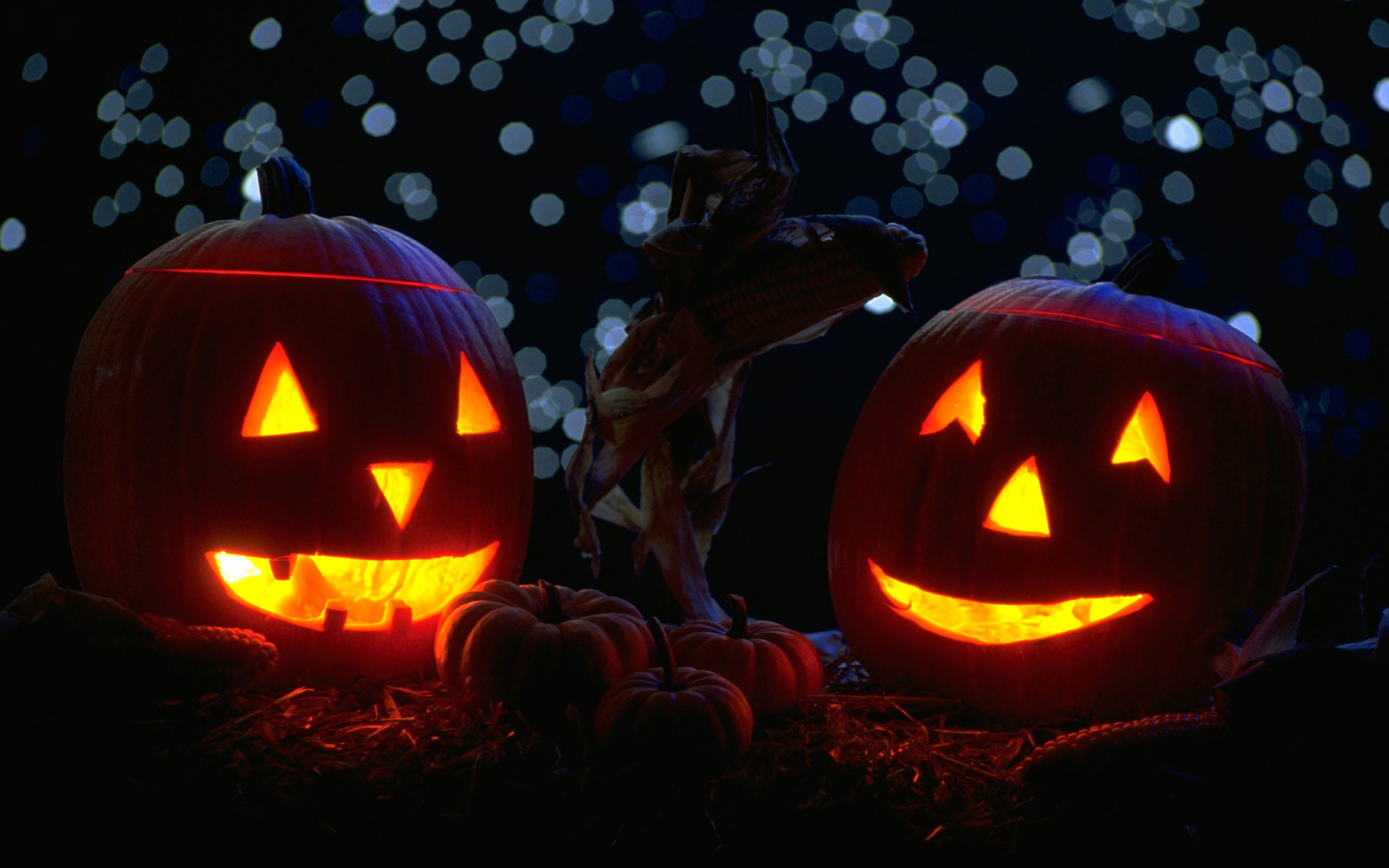 Pumpkins-mit-Kerzen-in-the-Nacht-Halloween-Widescreen-Wallpaper