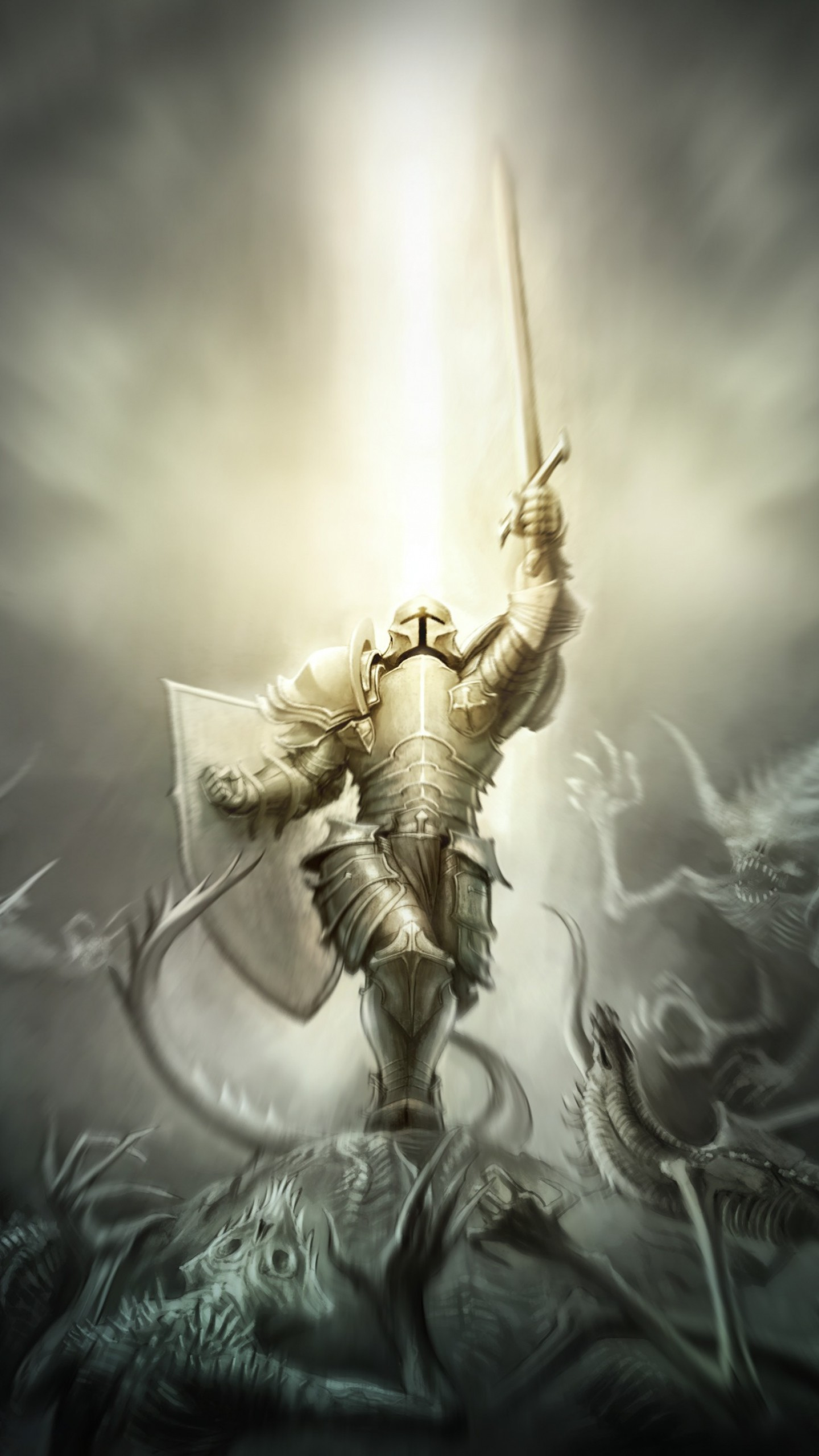 Preview wallpaper diablo 3, crusader, armor 1440×2560