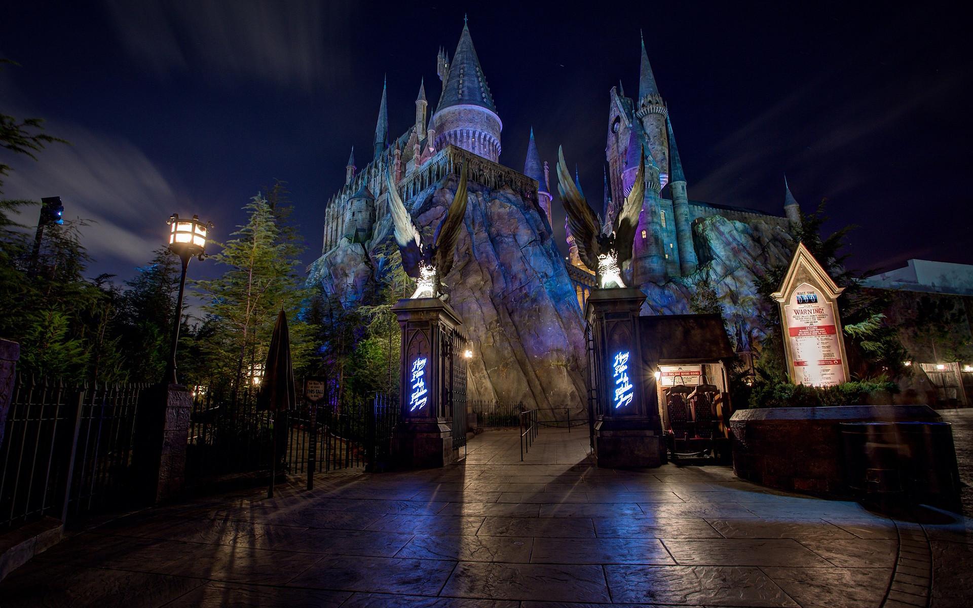 Disney Castle W… … castle walt.