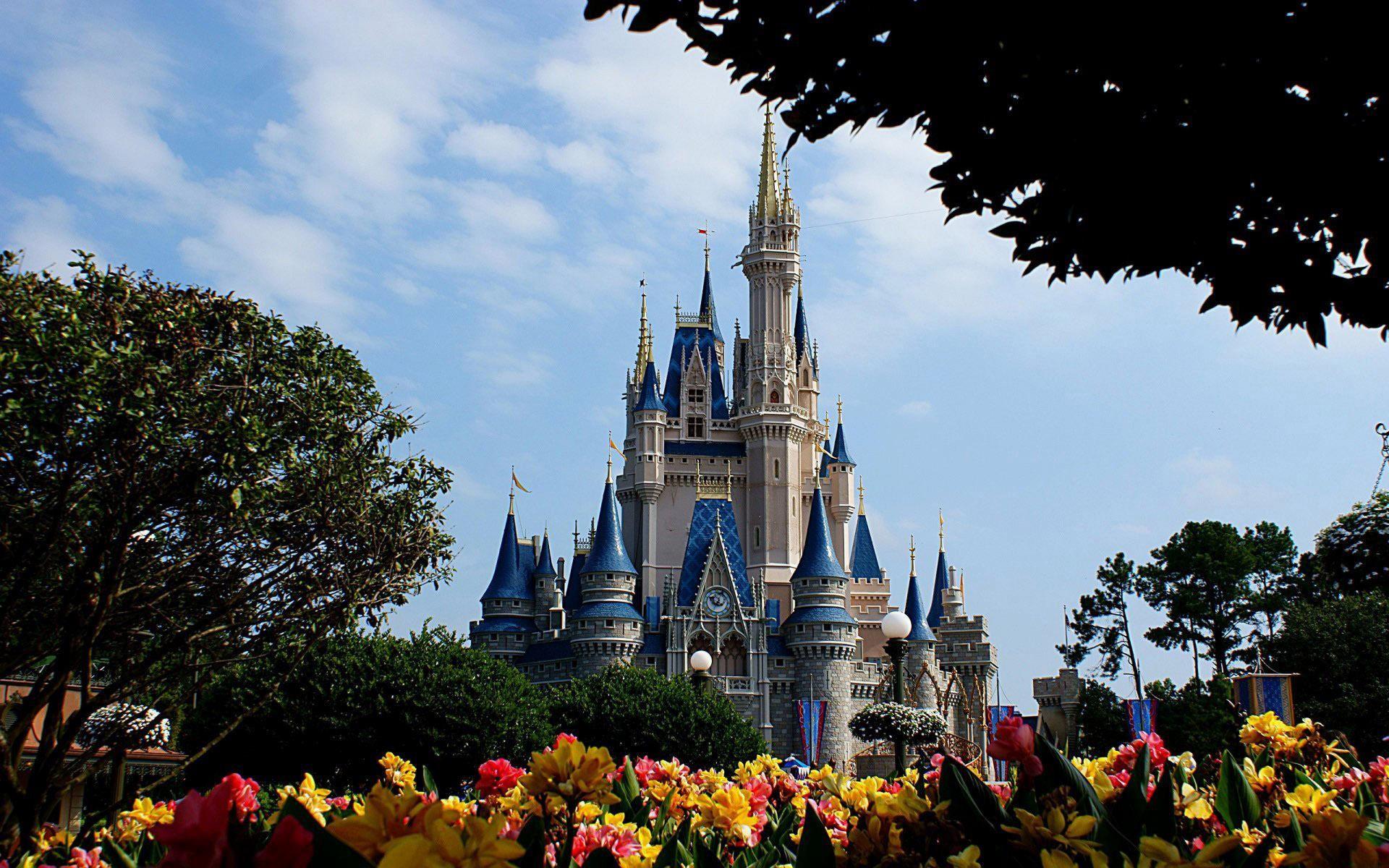 wallpaper.wiki-Disneyland-disney-castle-tree-sky-PIC-