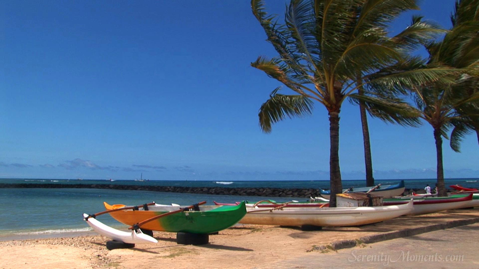 Free Screensavers Beach Scenes